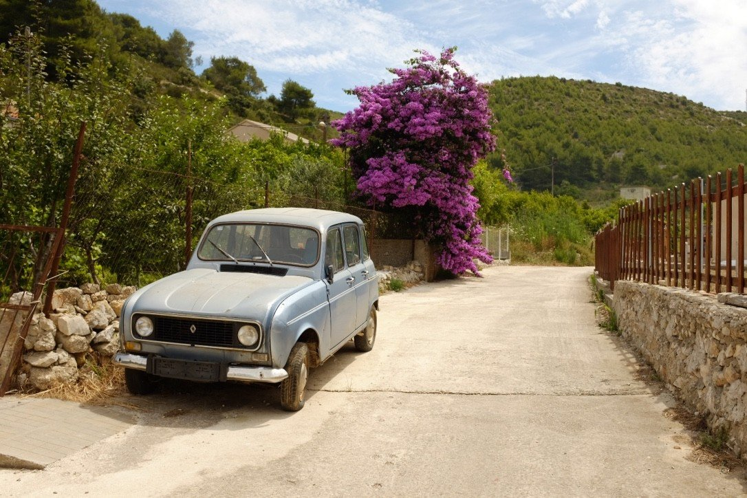 calm car charming flowers Greenery isolation quaint remote serene Travel Tips trees outdoor tree ground vehicle land vehicle transport way flower curb