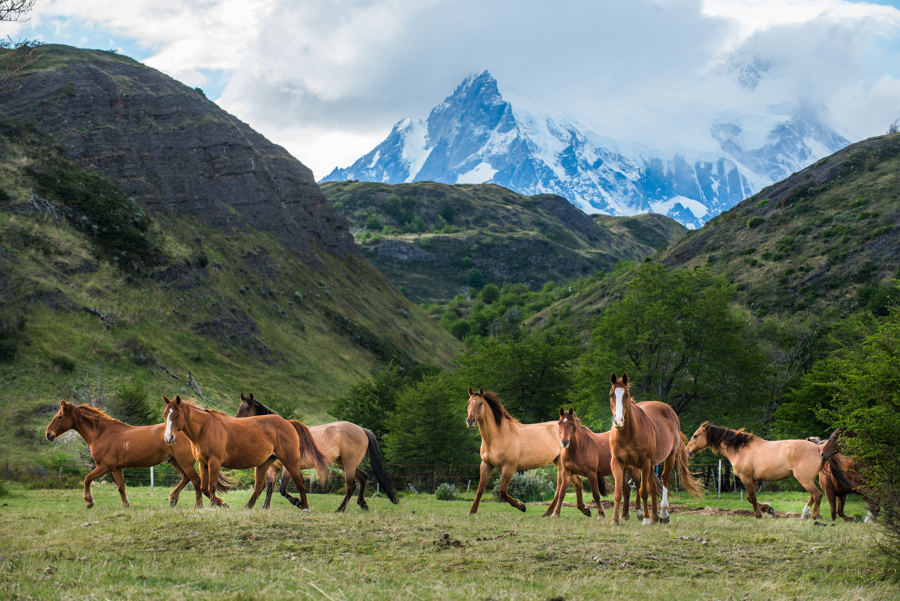 Adventure Hotels Jetsetter Guides Packing Tips Travel Tips Trip Ideas mountain sky cow outdoor grass mountainous landforms pasture horse wilderness group grassland cattle animal ecosystem grazing herd mountain range meadow mammal landscape prairie background valley plateau horse like mammal mare hillside lush distance highland