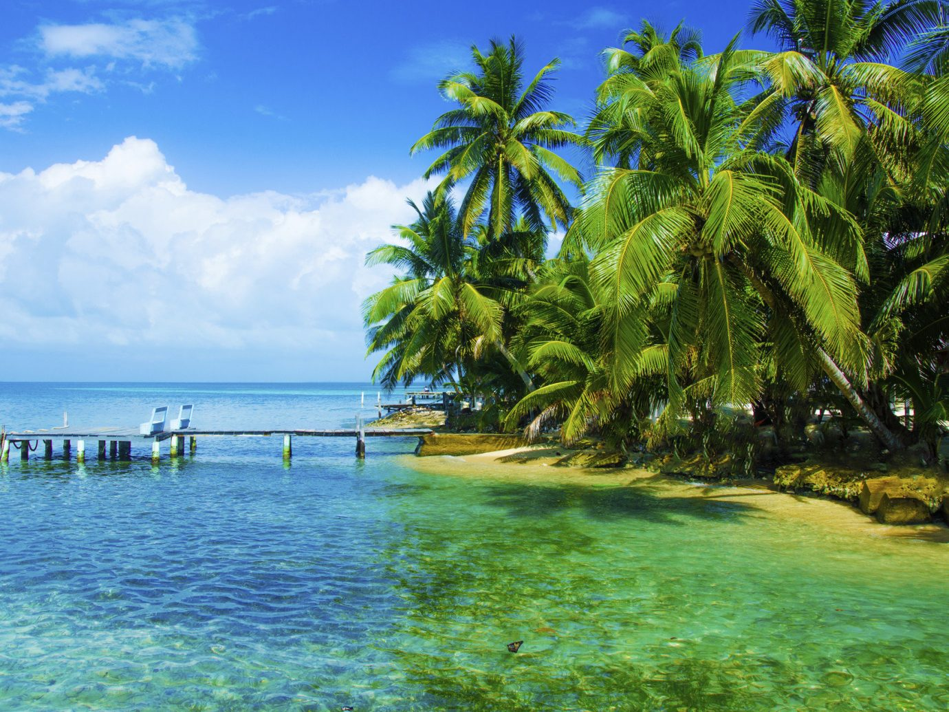 Trip Ideas tree water outdoor geographical feature landform caribbean body of water tropics Beach Sea Nature vacation Ocean arecales Lagoon Island bay Coast plant palm family Jungle Resort islet shore