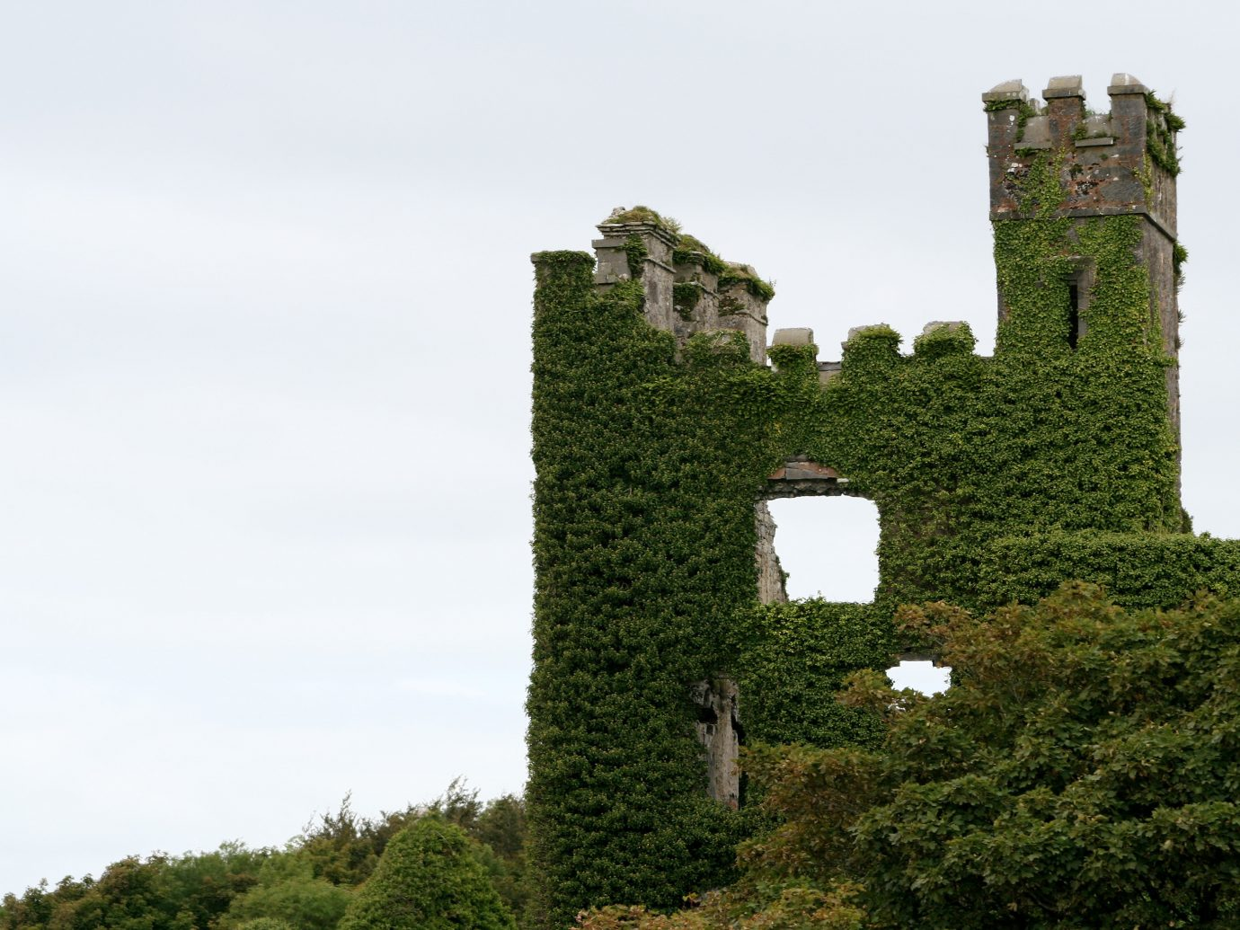 Offbeat tree outdoor sky landmark building ecosystem castle Ruins hill woody plant château rural area tower ancient history stone