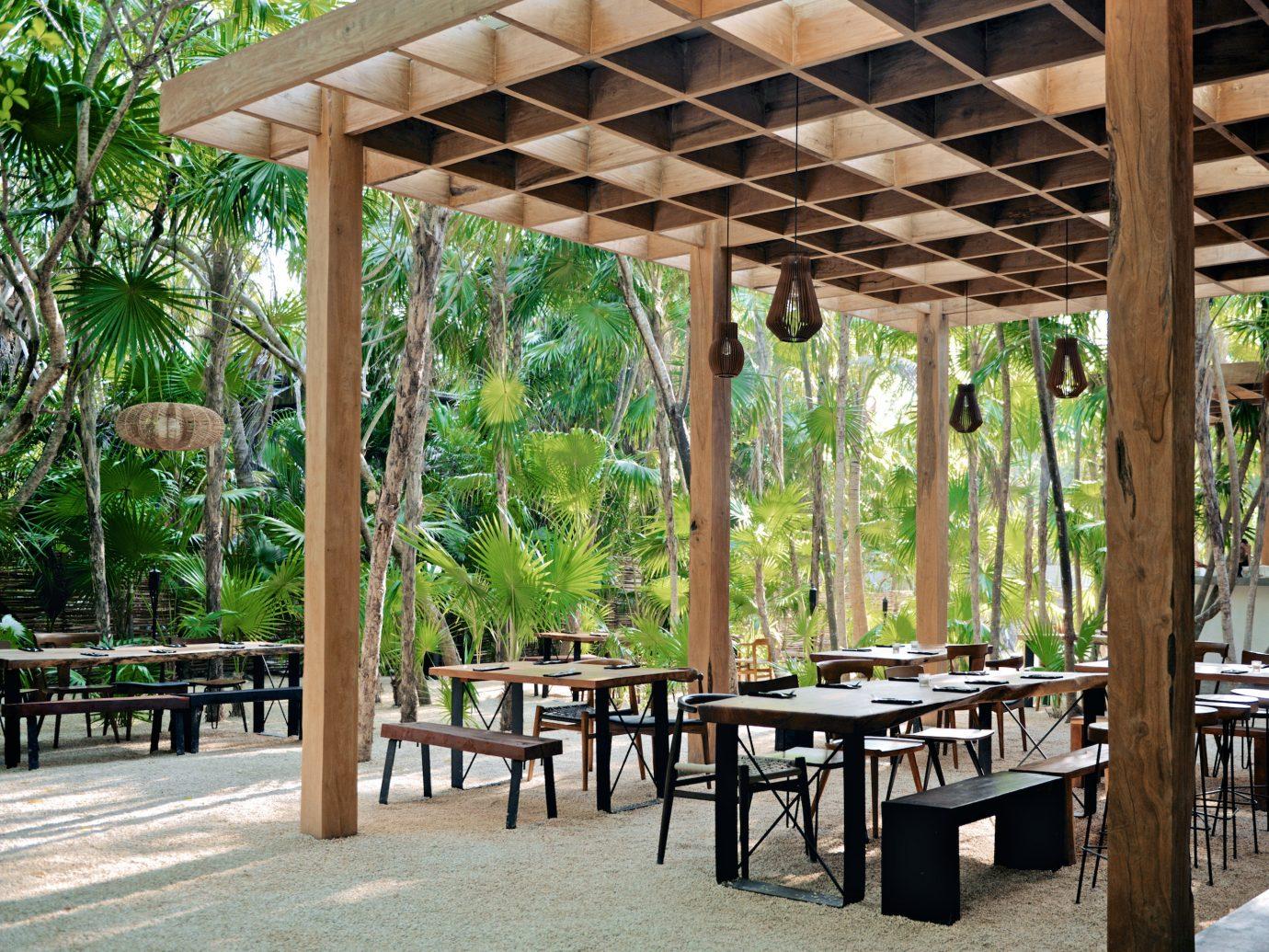 City Mexico Trip Ideas Tulum plant tree Resort outdoor structure pavilion table pergola Patio leisure arecales gazebo