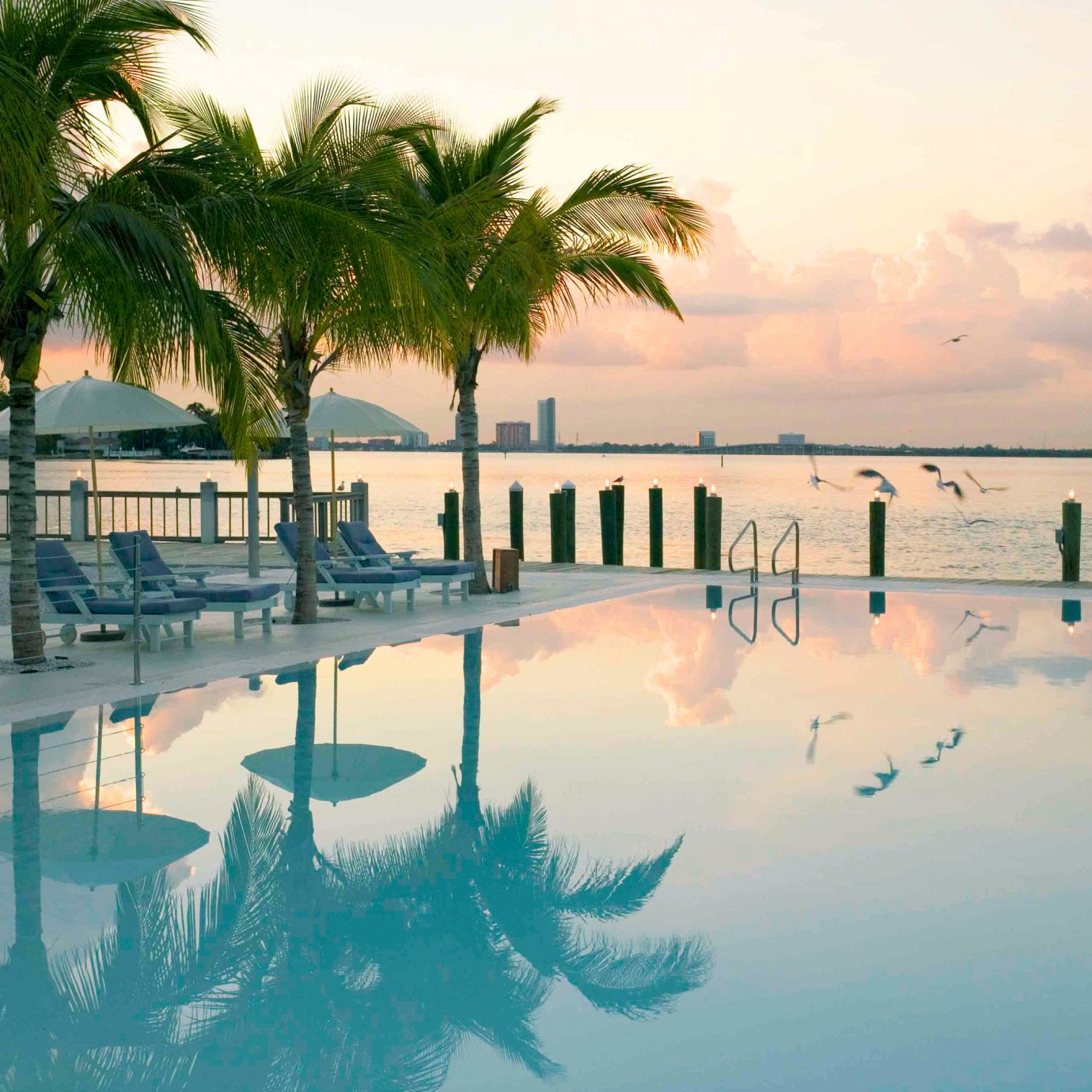 Adult-only Pool Romance Scenic views Trip Ideas Wellness outdoor tree water palm Ocean Beach Sea plant vacation reflection swimming pool morning arecales Resort Sun Nature caribbean Sunset Lagoon bay wave shore lined several sandy day line