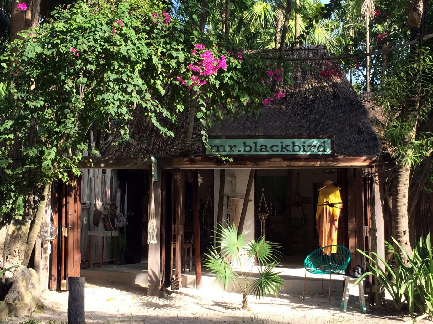 City Mexico Trip Ideas Tulum plant tree house arecales outdoor structure cottage flower