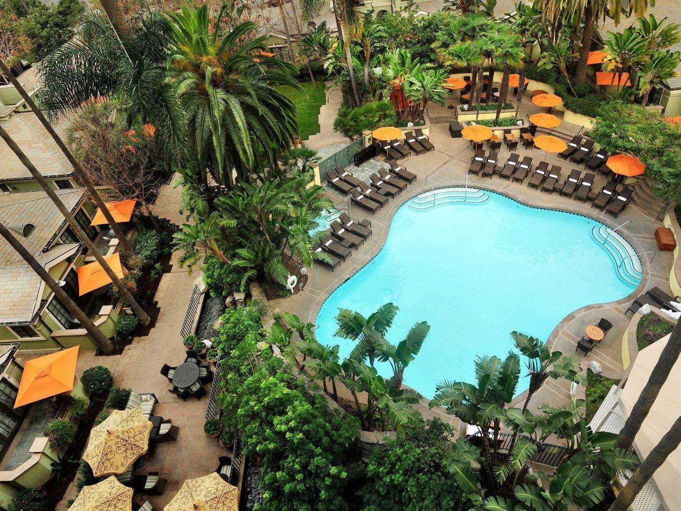 Trip Ideas tree swimming pool plant Resort estate backyard mansion Garden Jungle decorated