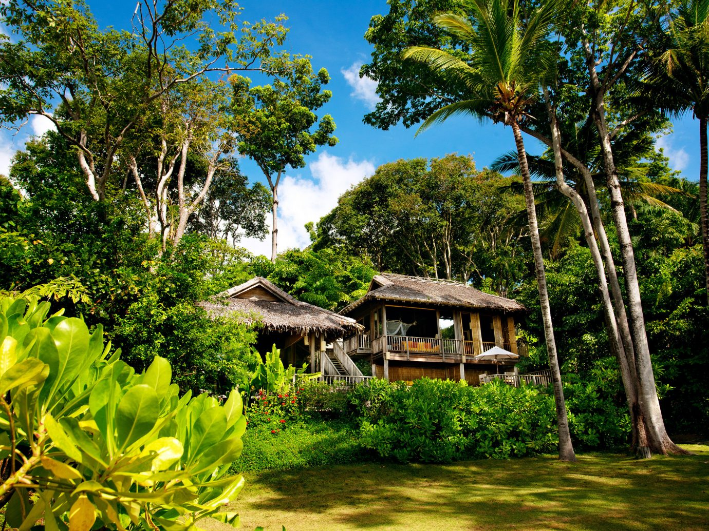 Beach Exterior Garden Grounds Hotels Phuket Thailand Tropical tree outdoor habitat natural environment plant botany house estate Jungle Forest tropics arecales woody plant rainforest rural area Resort flower plantation surrounded
