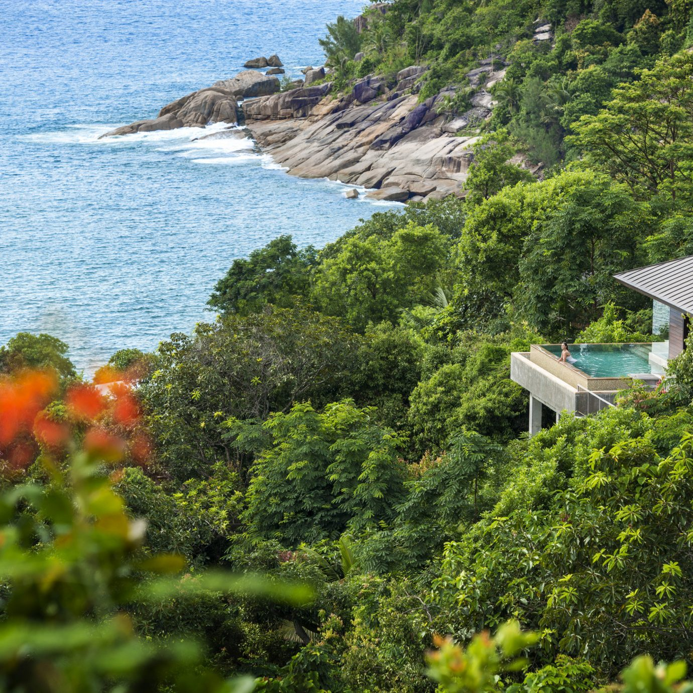 Hotels tree outdoor water vegetation ecosystem Nature Coast vacation flower Jungle Sea rainforest lush surrounded