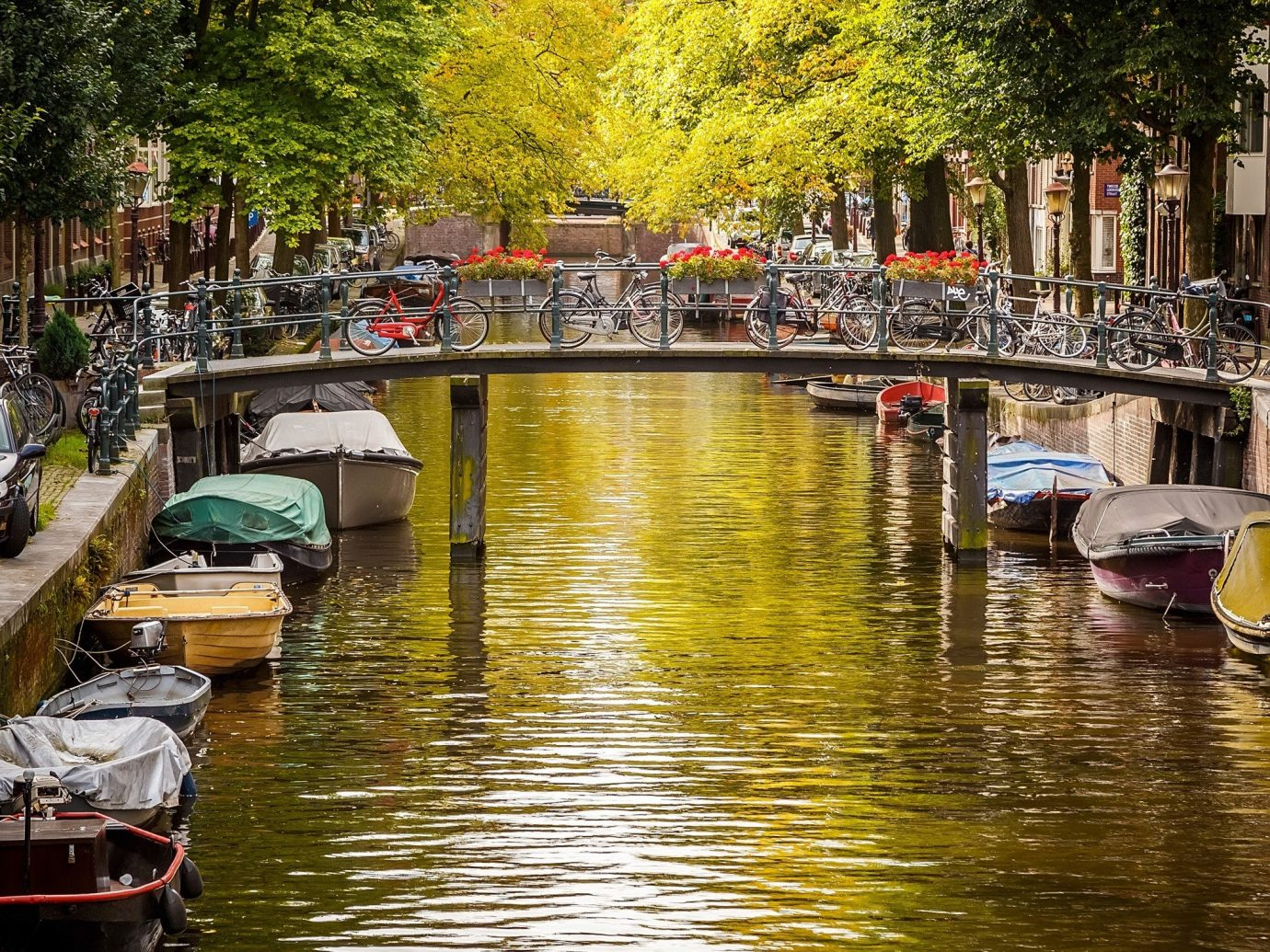 Trip Ideas tree water outdoor Boat Canal body of water landform geographical feature River waterway season channel reflection autumn flower Harbor lined several line