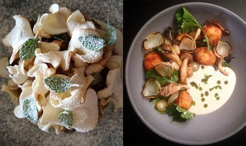 Food + Drink food dish meal cuisine hors d oeuvre produce breakfast mushroom vegetable different plastic