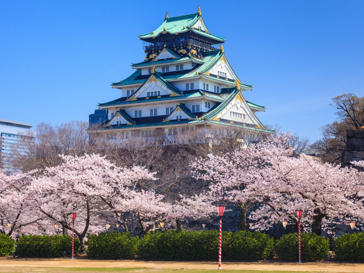 Japan Trip Ideas landmark sky flower plant tourist attraction tree cherry blossom spring building blossom tourism