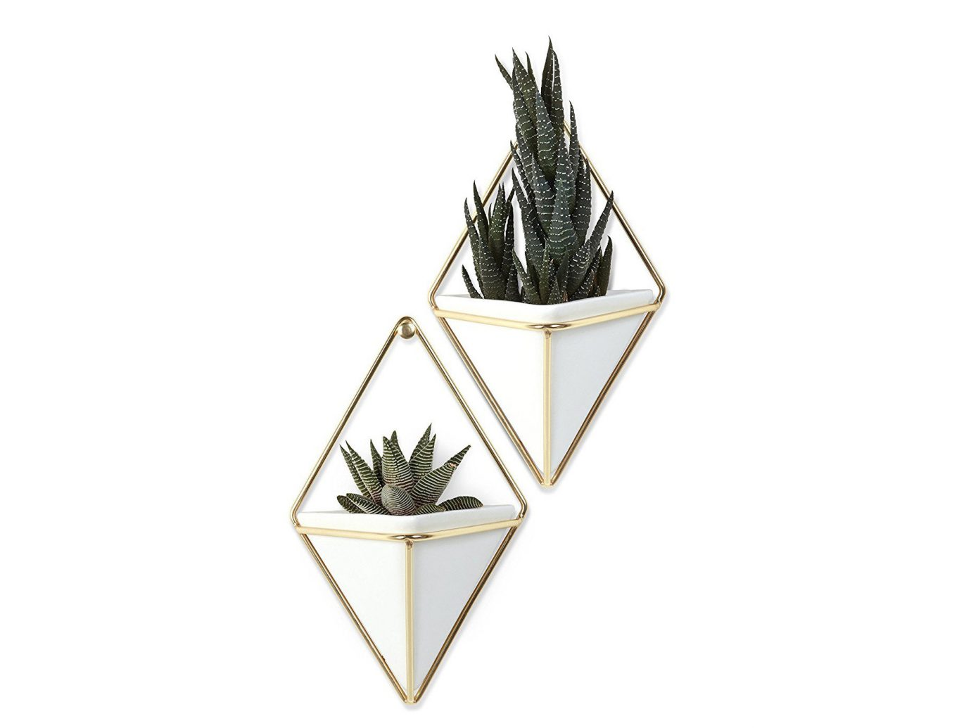 Gift Guides Travel Shop product design flowerpot angle