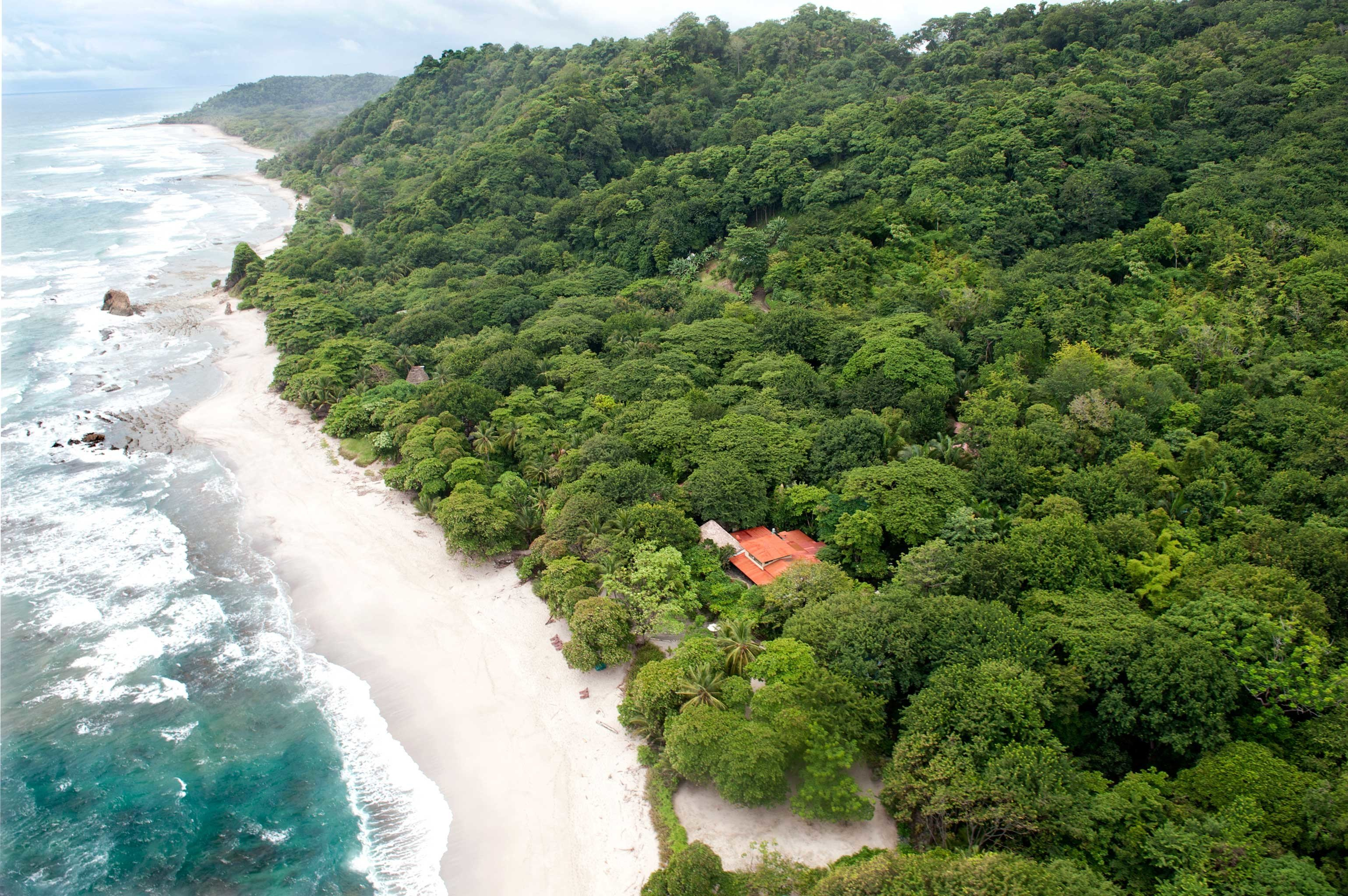 Beachfront Hotels Jungle Ocean Outdoor Activities Scenic views tree outdoor hill station water Nature body of water River geological phenomenon Waterfall Coast rainforest Forest water feature traveling wave surrounded