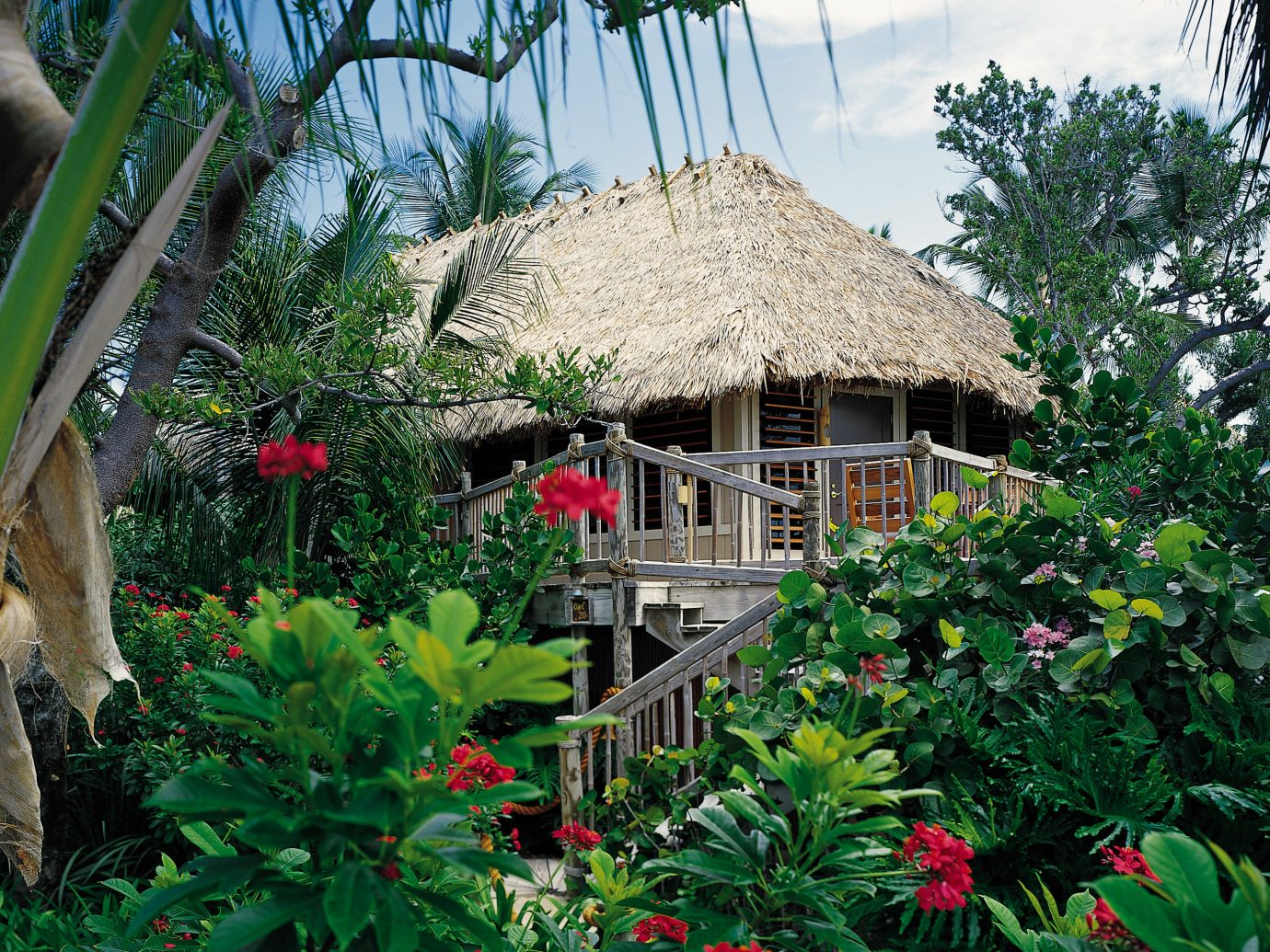 Beachfront Exterior Hotels Island Outdoors Resort Romance Romantic Secret Getaways Trip Ideas Waterfront tree outdoor house plant Garden botany flower Jungle greenhouse yard backyard cottage estate tropics rainforest outdoor structure bushes surrounded