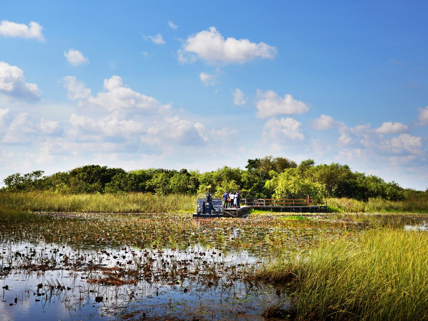 Florida Miami National Parks Outdoors + Adventure Trip Ideas Weekend Getaways outdoor sky grass water habitat Nature River reflection geographical feature shore natural environment pond wetland cloud marsh Lake loch morning rural area landscape waterway vehicle Sea reservoir day