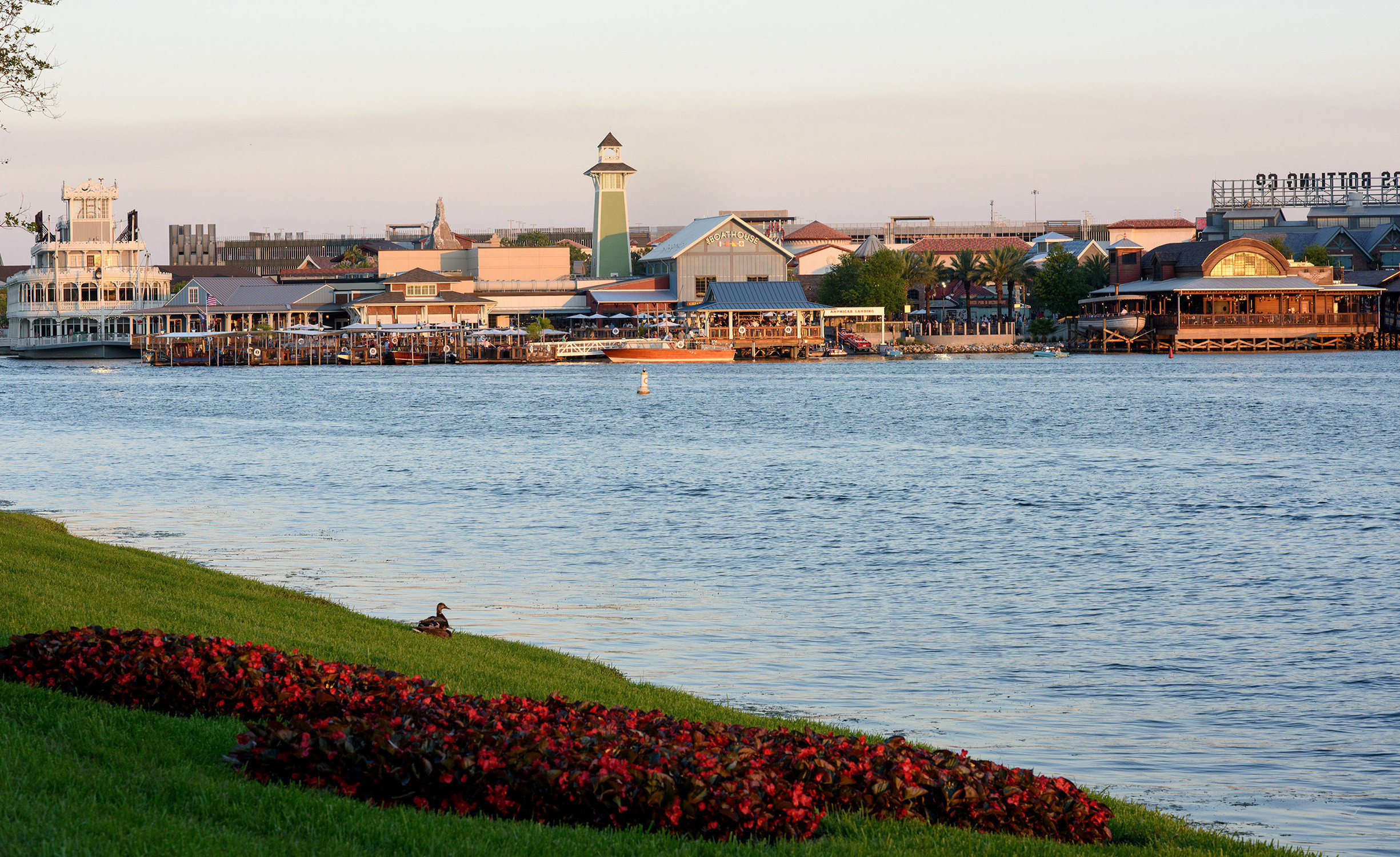 Travel Tips sky outdoor grass water shore Sea Coast scene horizon River vacation Ocean Beach bay flower cityscape