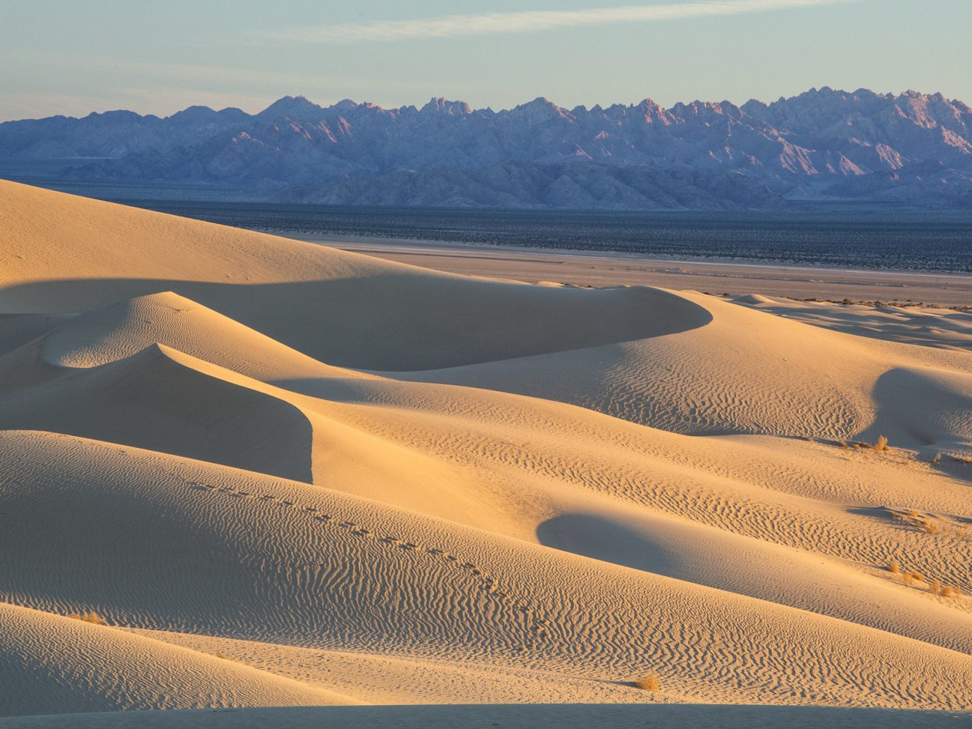 Sand dunes at Mojave National Preserve