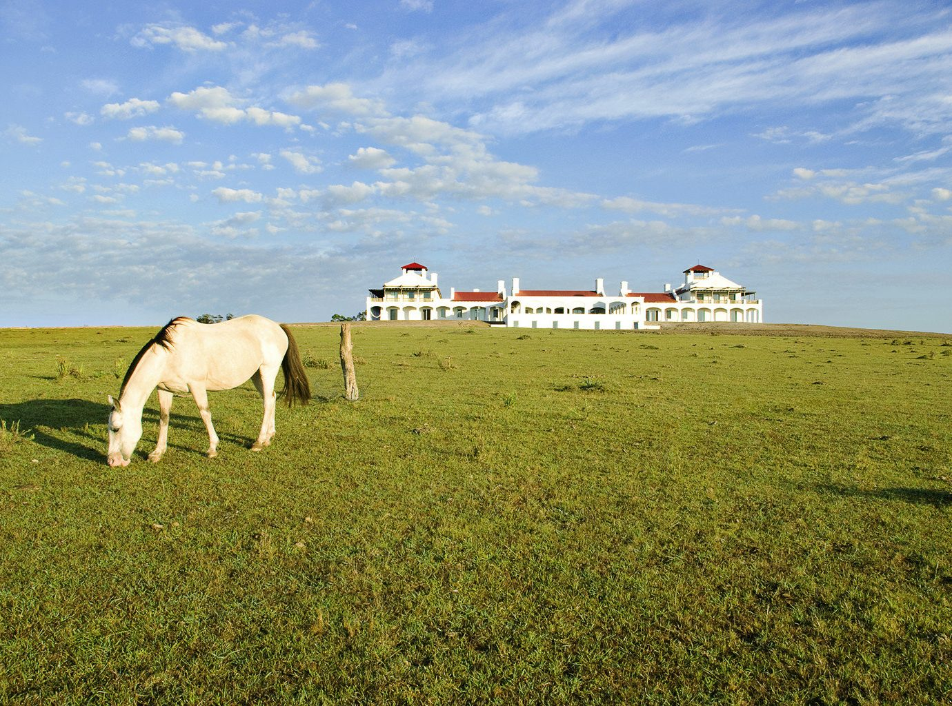 Beach Romantic Getaways south america Trip Ideas Uruguay grass sky outdoor field habitat pasture grassland natural environment plain grazing ecosystem prairie steppe horizon meadow green rural area Coast hill landscape Farm grassy agriculture Sea flower open lush horse day