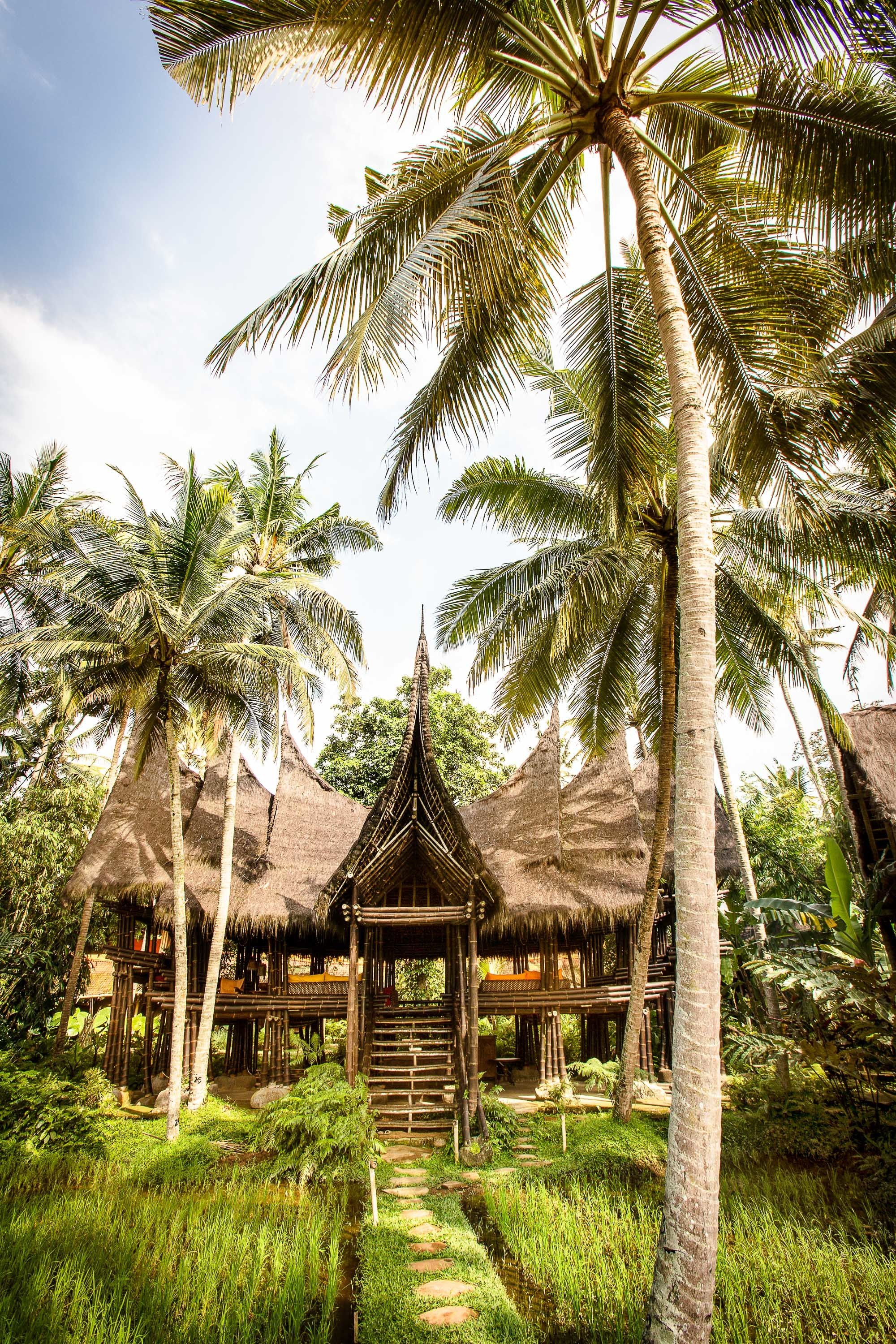 Boutique Hotels Hotels tree outdoor grass plant palm vegetation arecales palm tree Resort tropics sky cottage hut real estate plantation estate home landscape house area lush