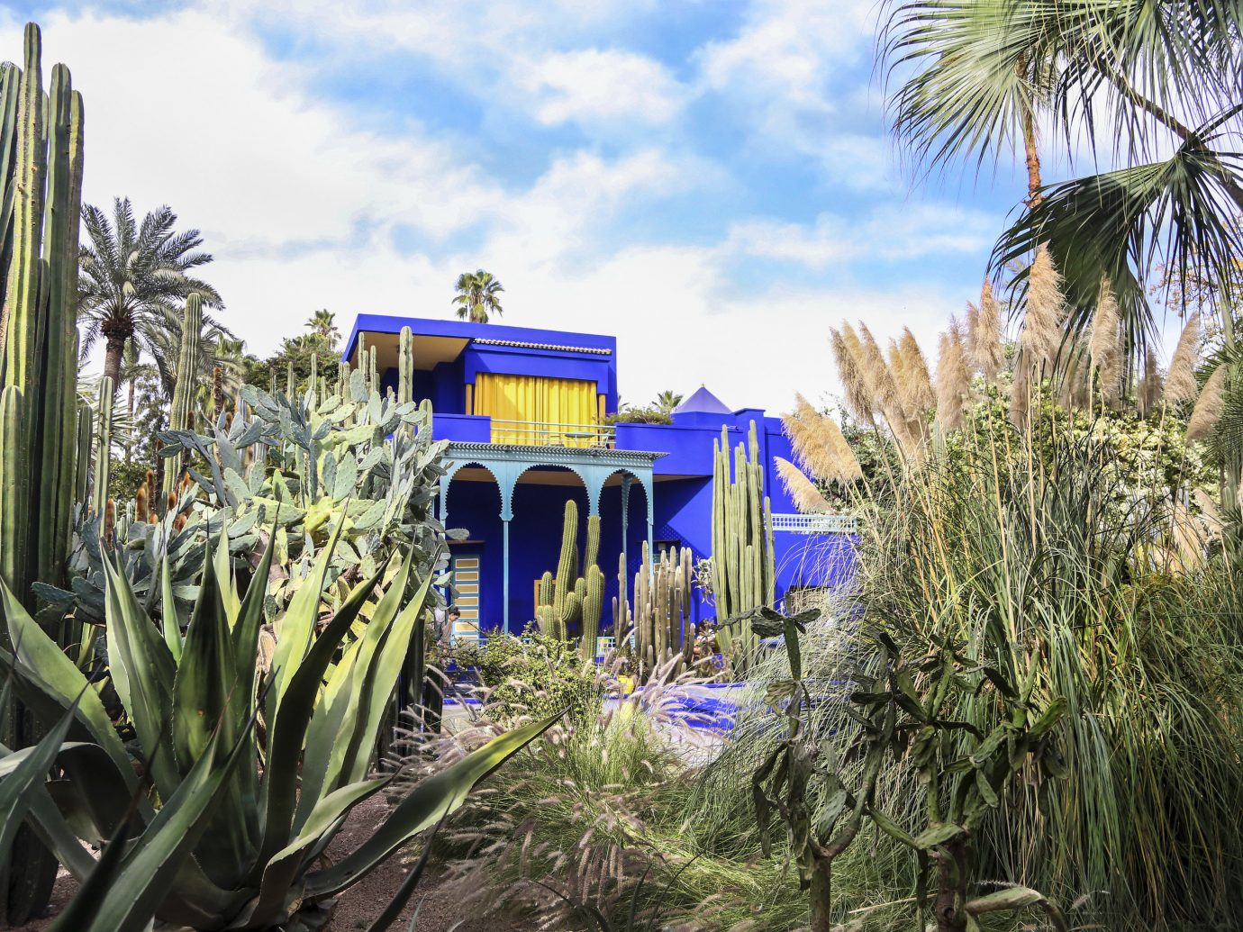 Arts + Culture Marrakech Morocco Style + Design plant majorelle blue arecales tree palm tree sky real estate grass landscape house