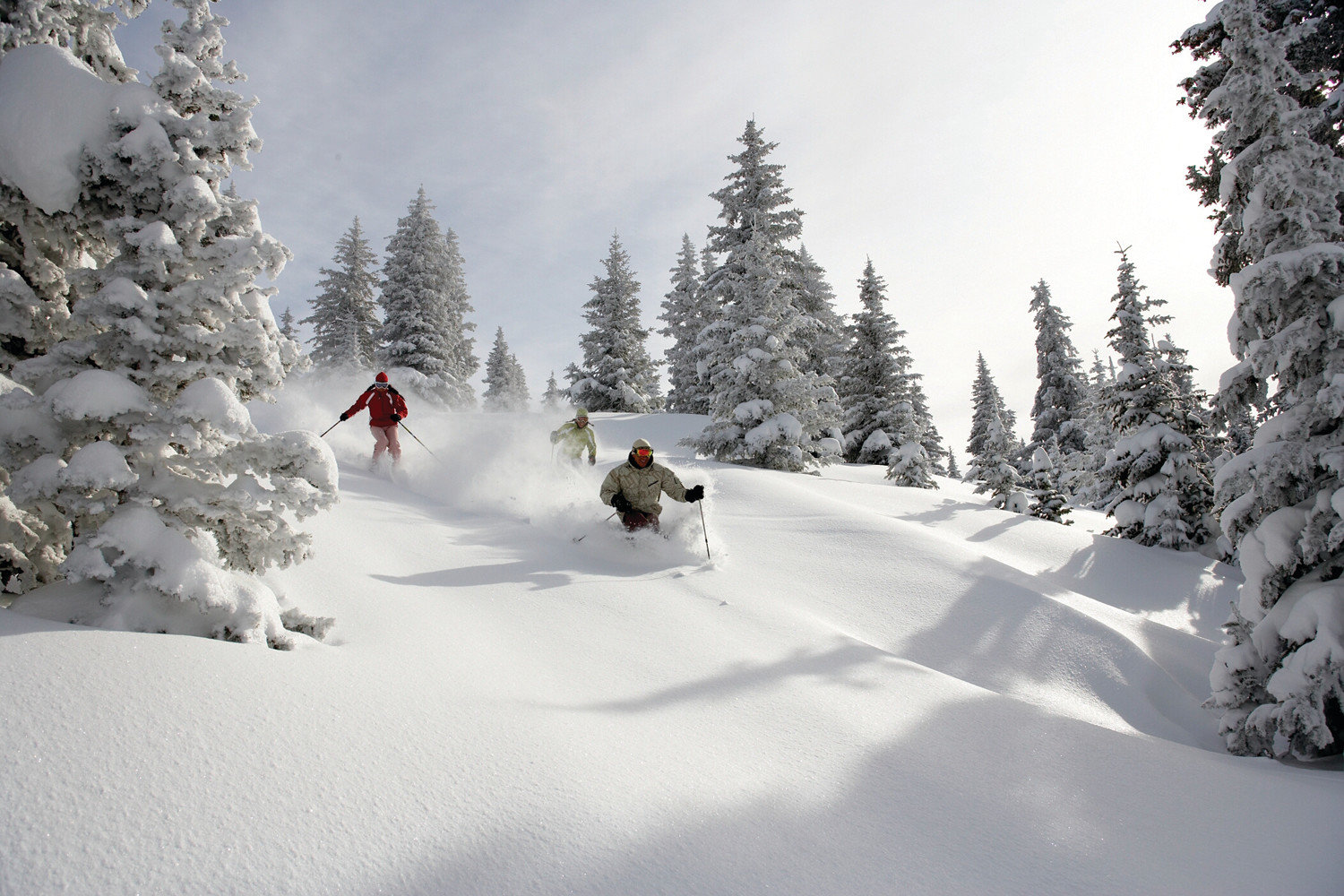 Mountains + Skiing Trip Ideas tree outdoor snow hill slope Nature Winter footwear weather covered geological phenomenon season Ski skiing ski equipment snowshoe piste ski slope winter sport mountain range nordic skiing ski touring ski mountaineering sports equipment Forest hillside day wooded