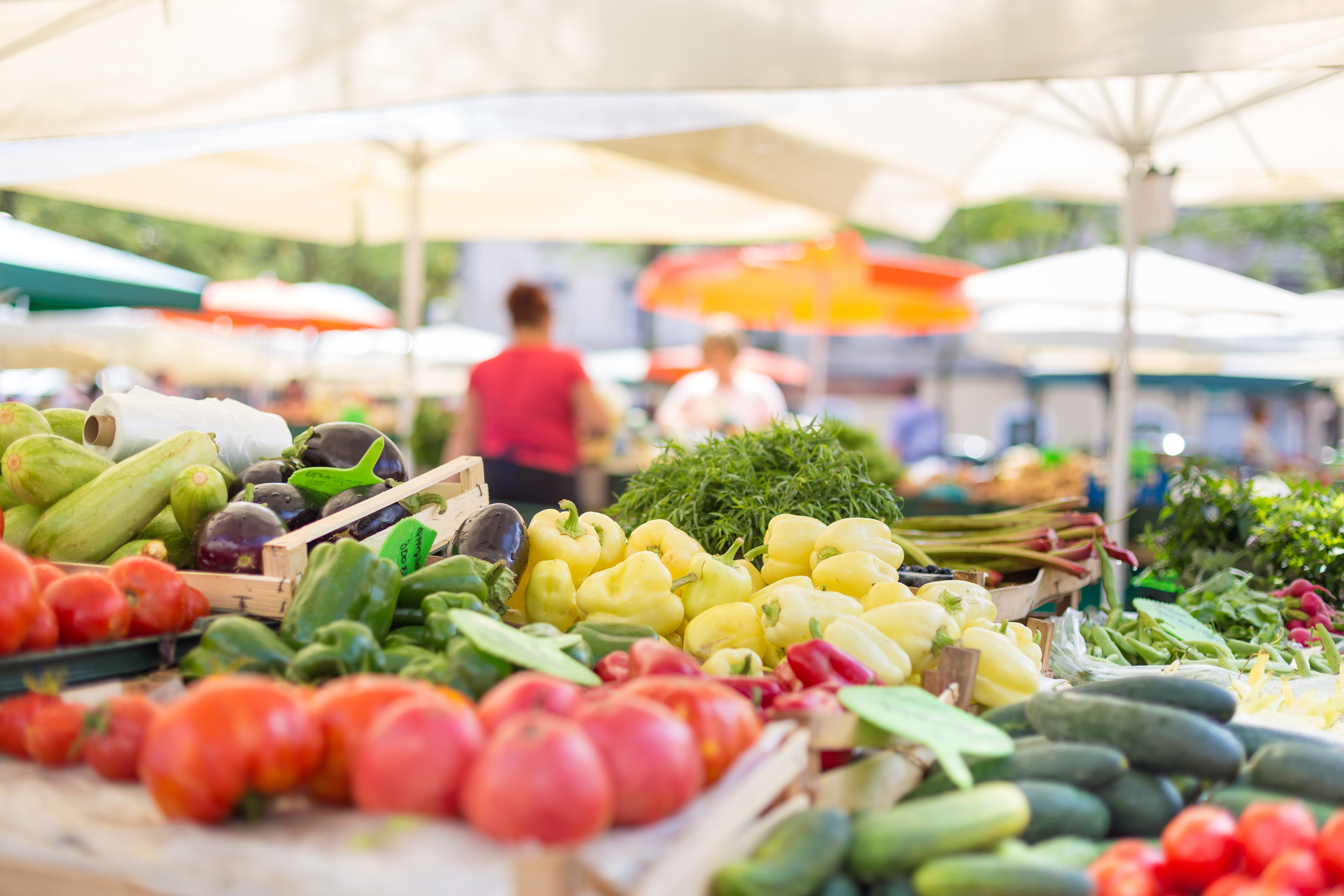 Food + Drink food local food dish vegetable meal public space City human settlement floristry market produce fruit lunch buffet sense brunch hors d oeuvre fresh