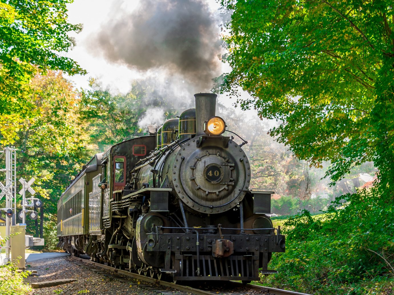 Family Travel Trip Ideas Weekend Getaways tree train track outdoor transport steam engine locomotive vehicle land vehicle rail transport steam engine rolling stock coming old smoke automotive engine part Forest railroad traveling wooded