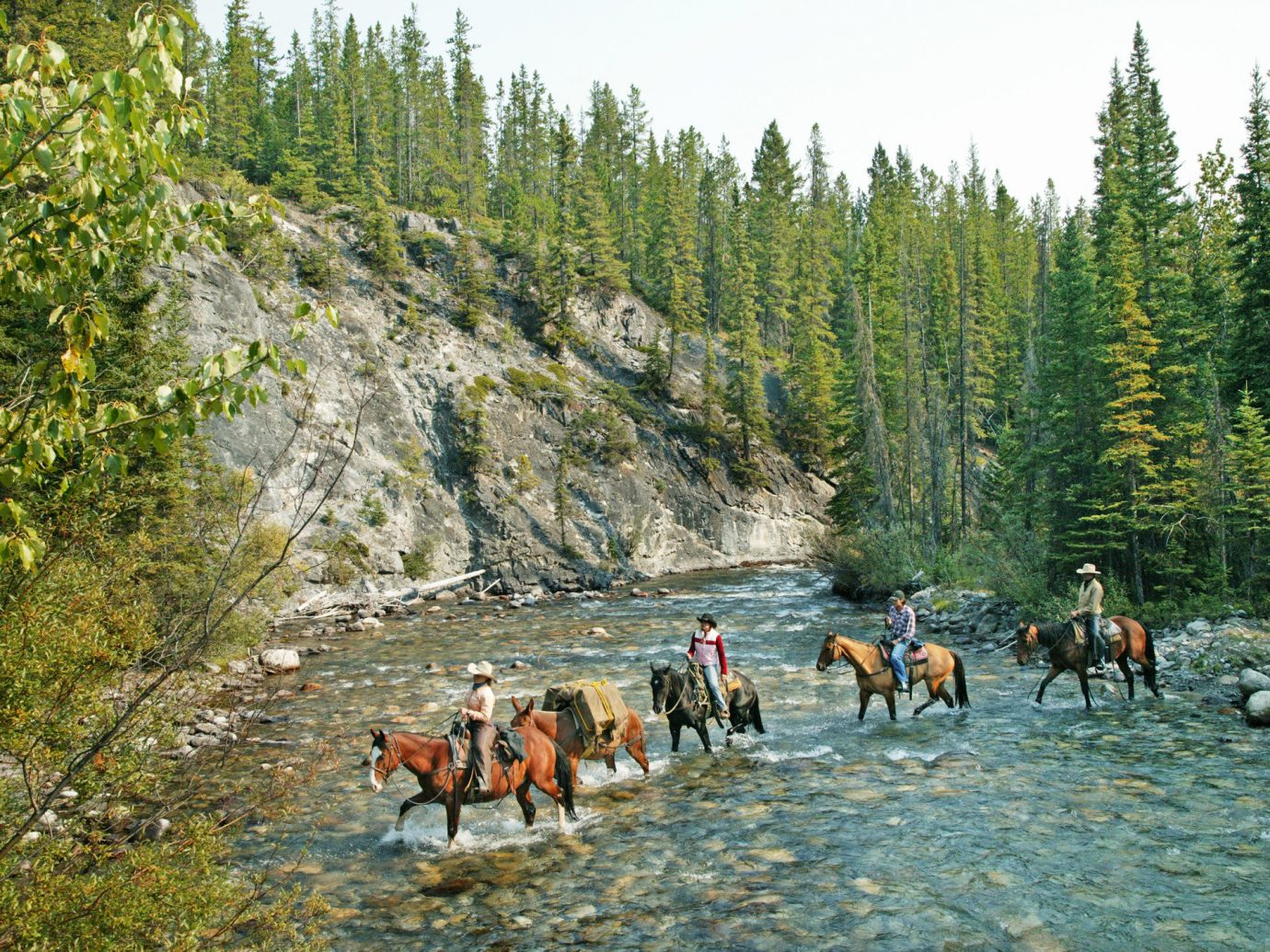 Mountains + Skiing National Parks Outdoors + Adventure Trip Ideas Weekend Getaways tree outdoor horse wilderness ecosystem River sports outdoor recreation group people walking Lake valley rapid Forest wooded several