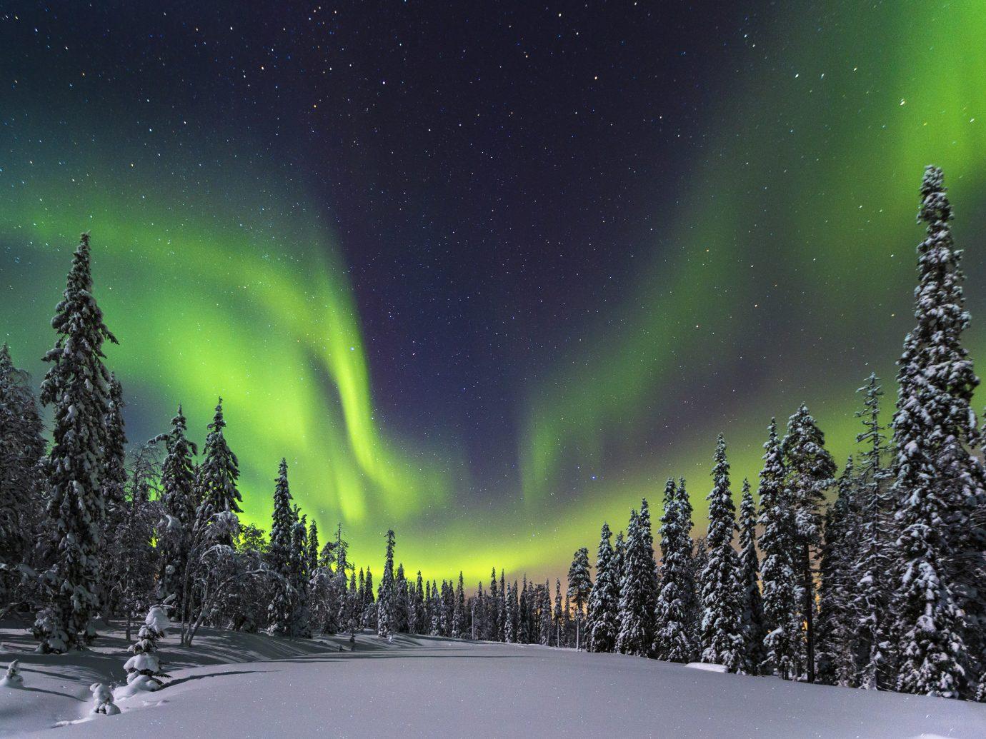 Offbeat Travel Tips tree outdoor aurora Nature atmosphere slope Night Sky