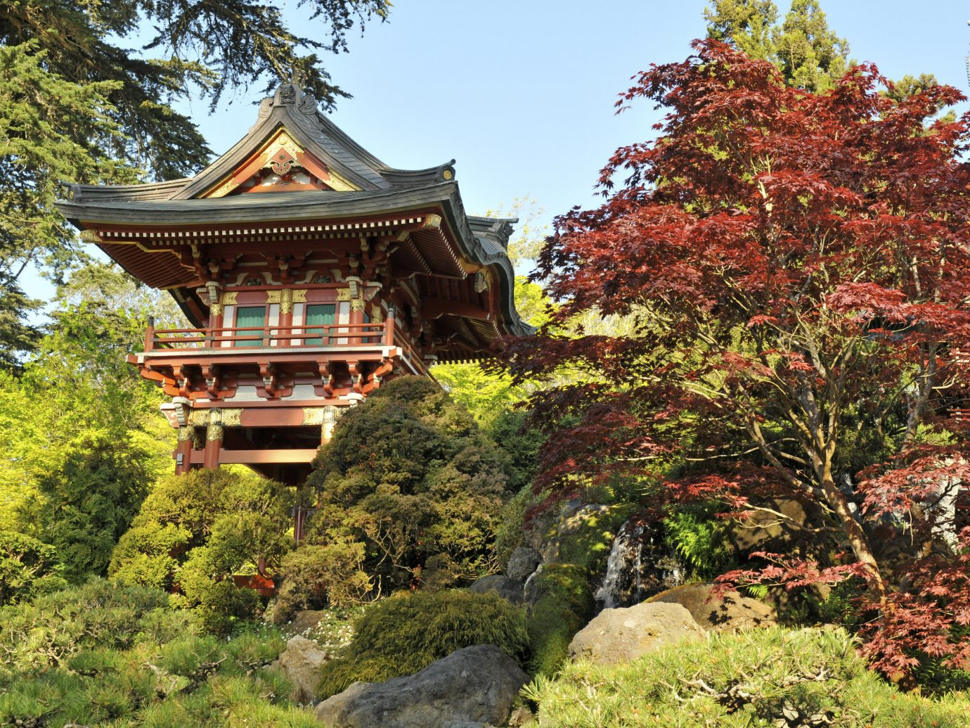 Beauty Health + Wellness Japan Kyoto San Francisco Travel Tips chinese architecture Nature leaf tree plant autumn Garden pagoda botanical garden tourist attraction house landscape shinto shrine temple outdoor structure estate shrub landscaping grass