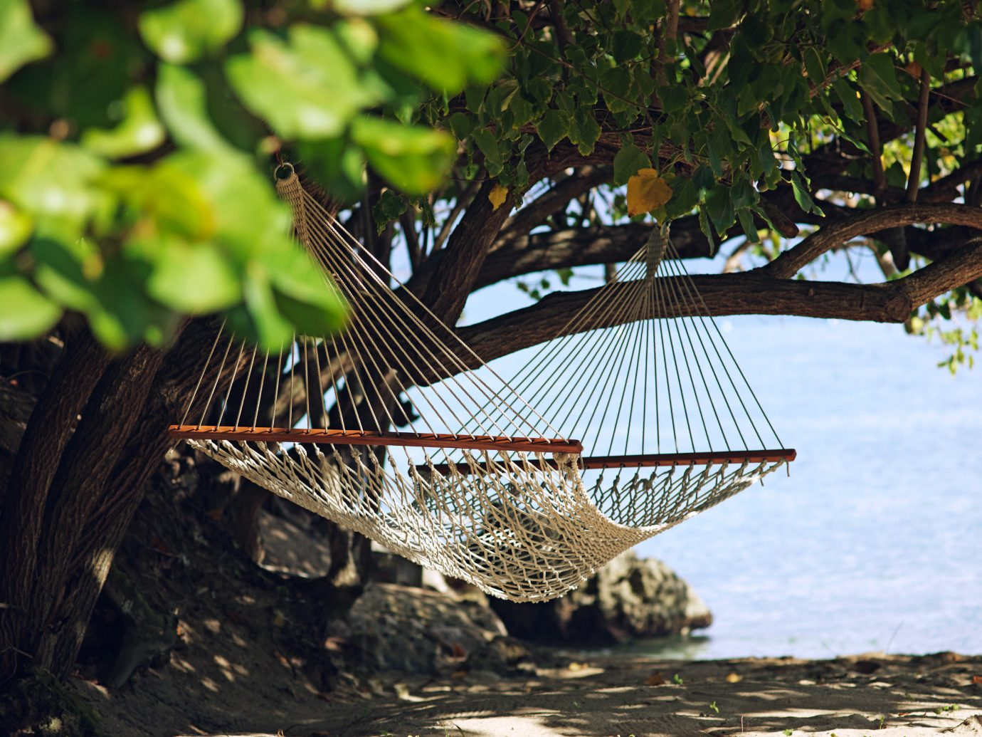 Hammock on the beach at Jamaica Inn