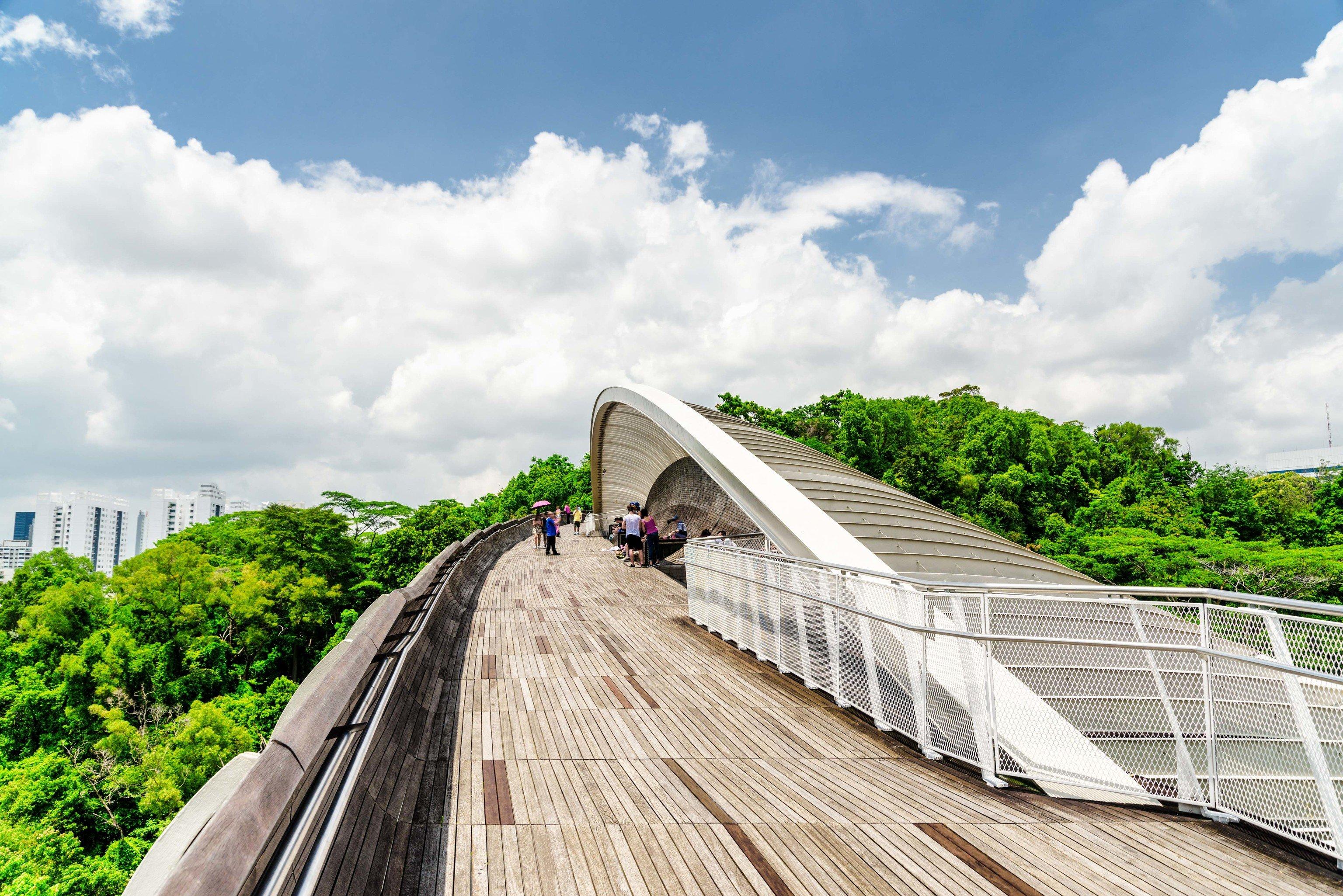 Offbeat Singapore Trip Ideas sky cloud tree bridge plant fixed link walkway leisure roof outdoor structure landscape boardwalk tourism vacation