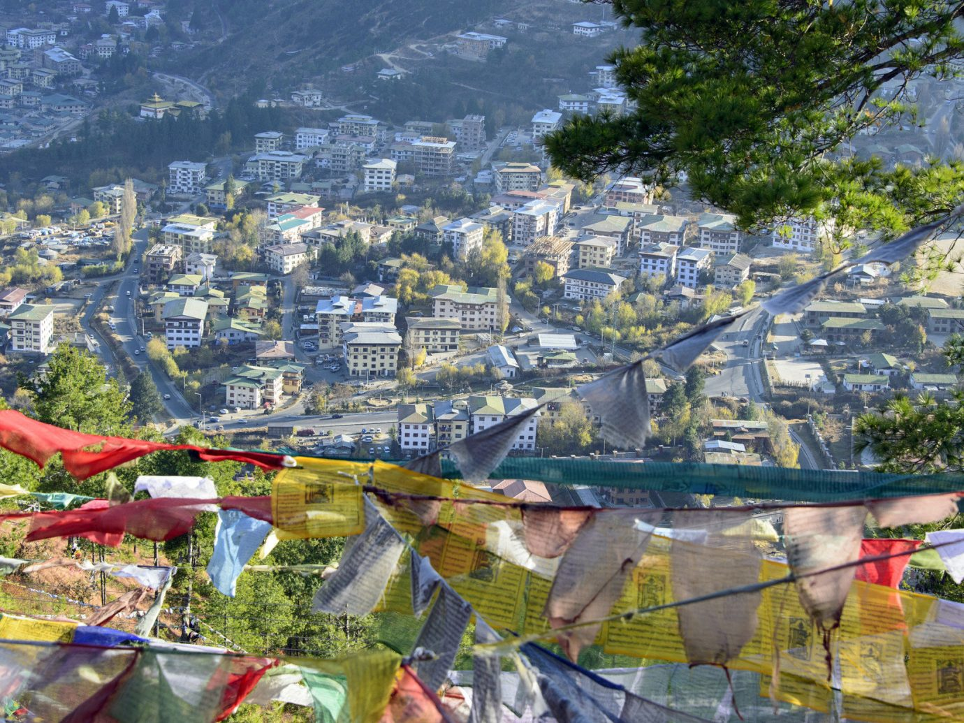 Travel Tips outdoor Town City human settlement cityscape tourism aerial photography flower park