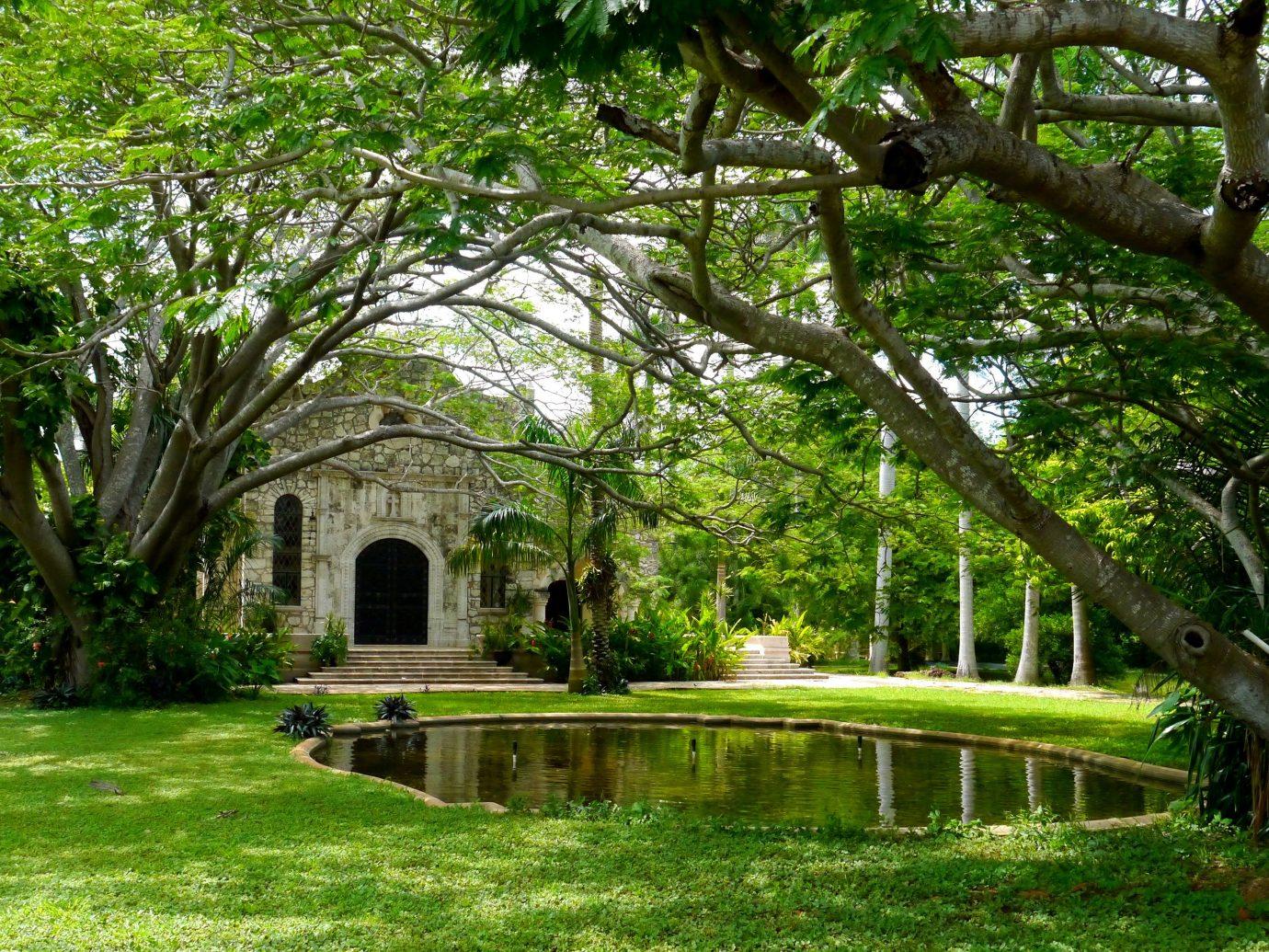 Hotels Trip Ideas grass tree outdoor park botany Garden estate plant flower woodland backyard botanical garden Jungle yard court lush