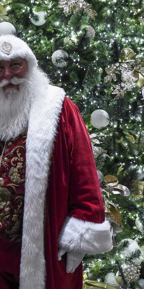 Hotels tree clothing santa claus Christmas person holiday statue coat dressed christmas decoration Christmas tree fictional character