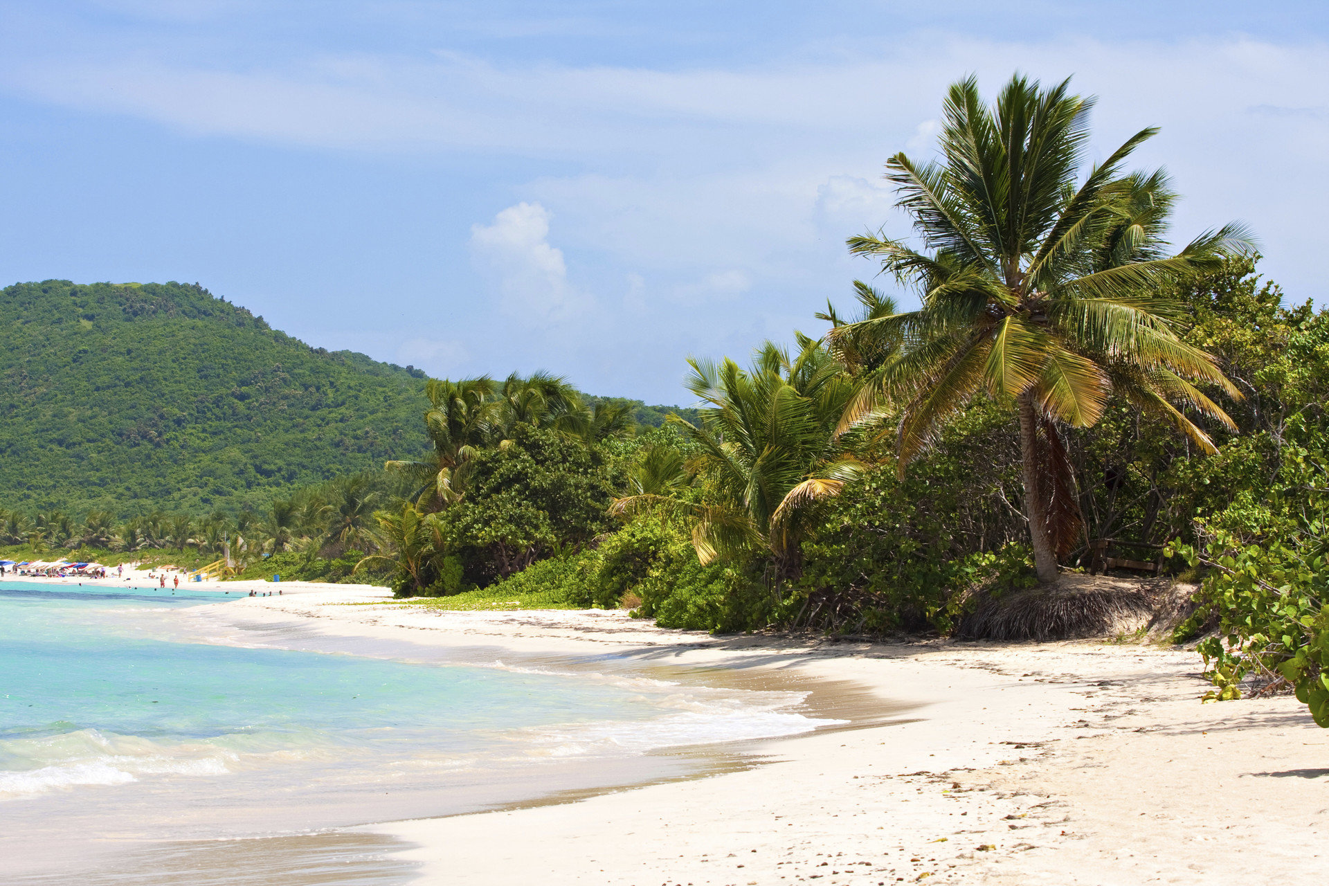 Secret Getaways Trip Ideas outdoor tree sky Beach Nature landform body of water Coast shore Sea vacation tropics Ocean arecales caribbean bay Island cape Lagoon palm family sandy