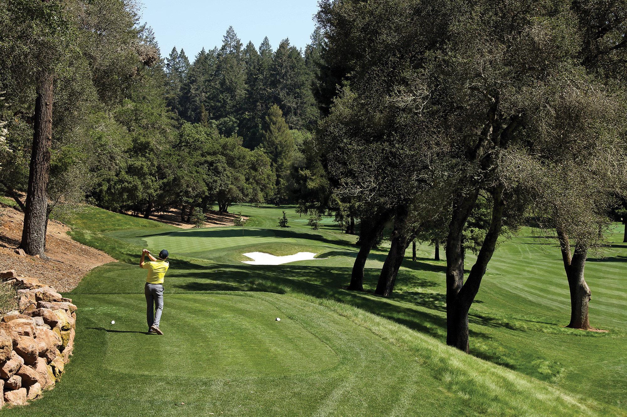 Hotels tree grass outdoor golf course golf club field Golf landscape plant recreation lawn plantation golf equipment lush