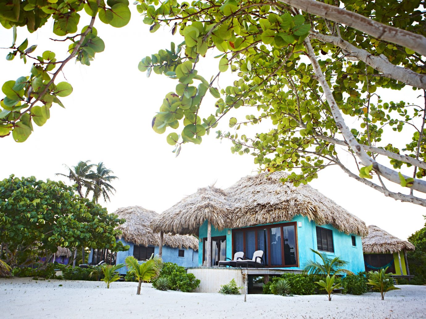Matachica Beach Resort In Ambergris Caye, Belize