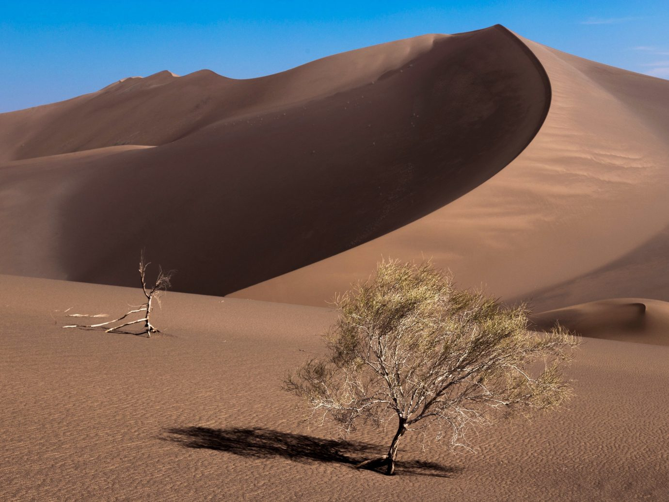 Trip Ideas sky Nature habitat erg geographical feature natural environment outdoor landform aeolian landform Desert sand mountain dune sahara landscape wadi plateau material day
