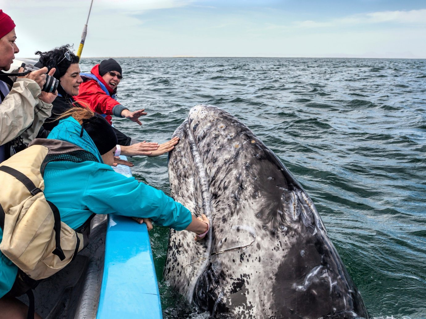 Trip Ideas water outdoor person sky Sea fishing marine mammal vehicle
