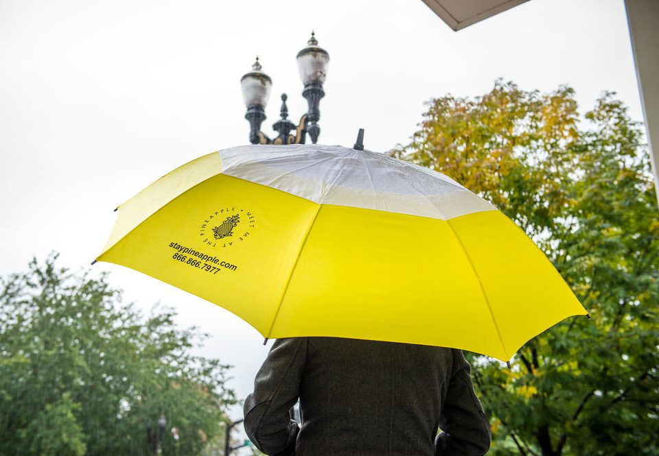 accessory umbrella tree rain yellow fashion accessory