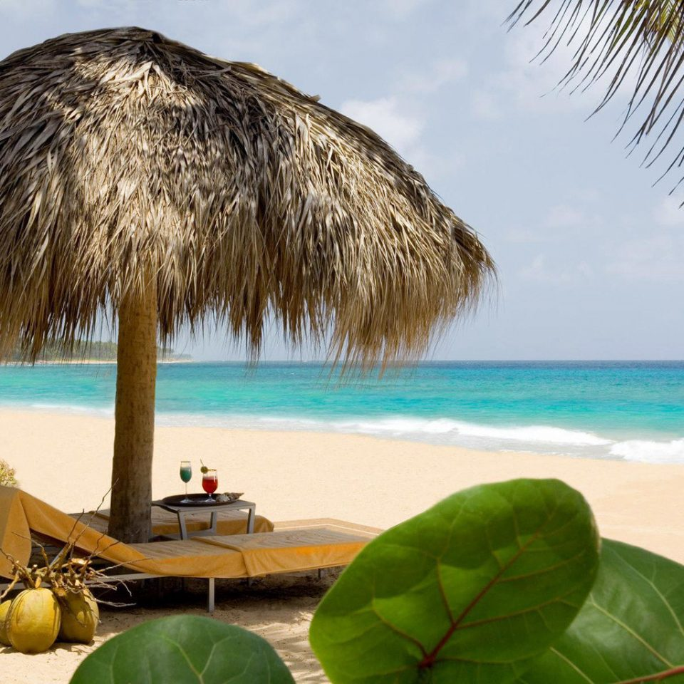 Adult-only All-inclusive Beach Beachfront Honeymoon Romance sky tree Ocean caribbean Sea tropics arecales Coast palm family plant Lagoon Island shore palm day