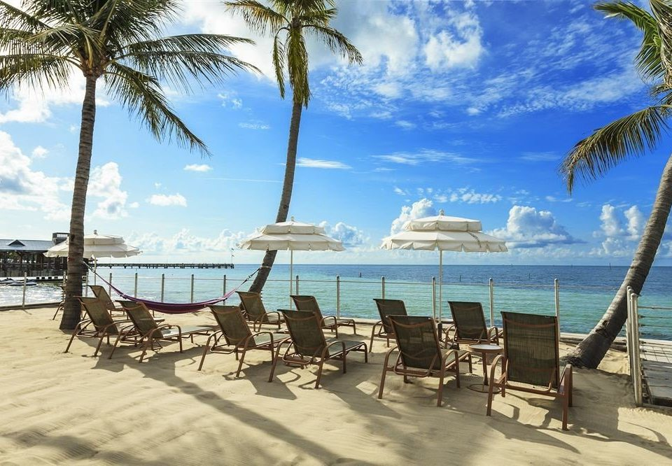 Adult-only B&B sky tree water Beach palm umbrella chair Sea Ocean caribbean shore Coast Resort arecales lawn plant Lagoon tropics lined sandy line shade