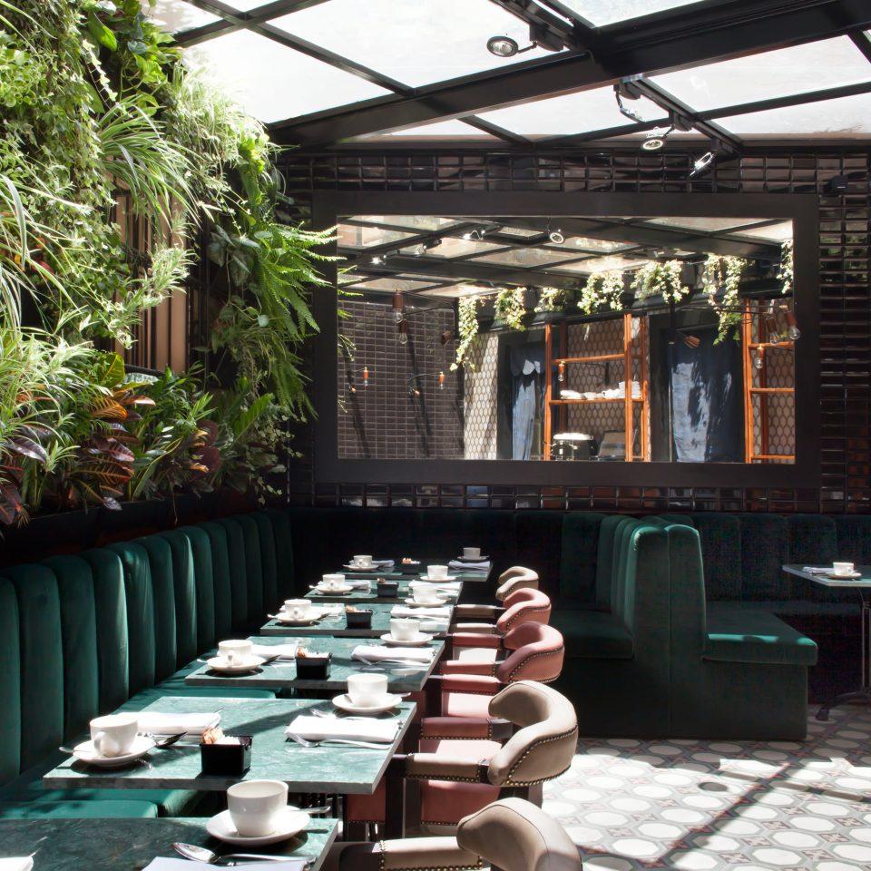 Adult-only Bar Boutique Budget City Drink Eat Hip restaurant Resort backyard
