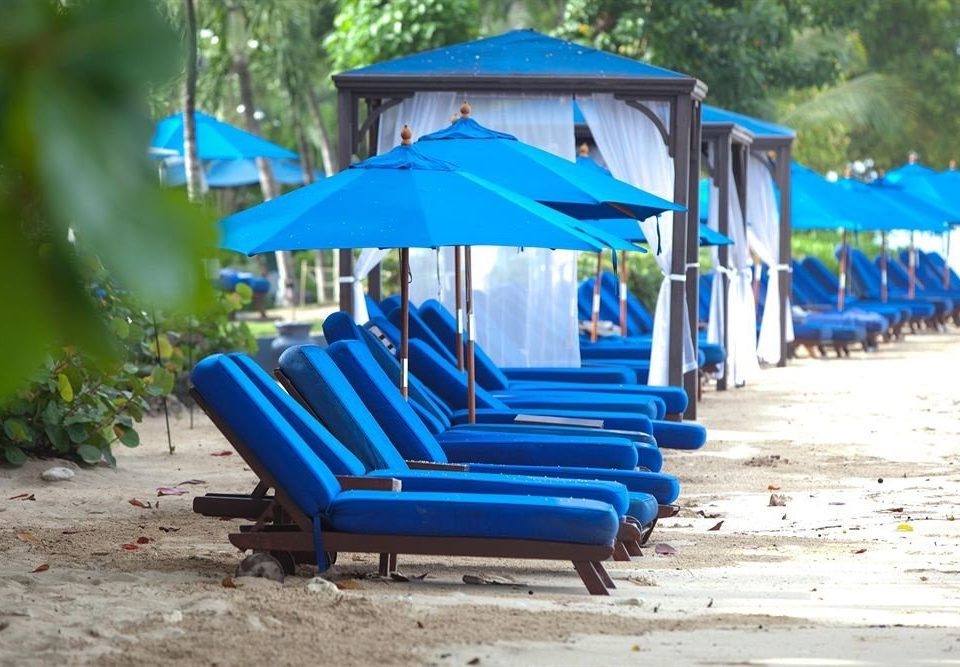 Adult-only Beach Beachfront Lounge Luxury Ocean tree ground blue chair leisure outdoor play equipment public space City Playground Play Resort park shade seat lined shore sandy colored