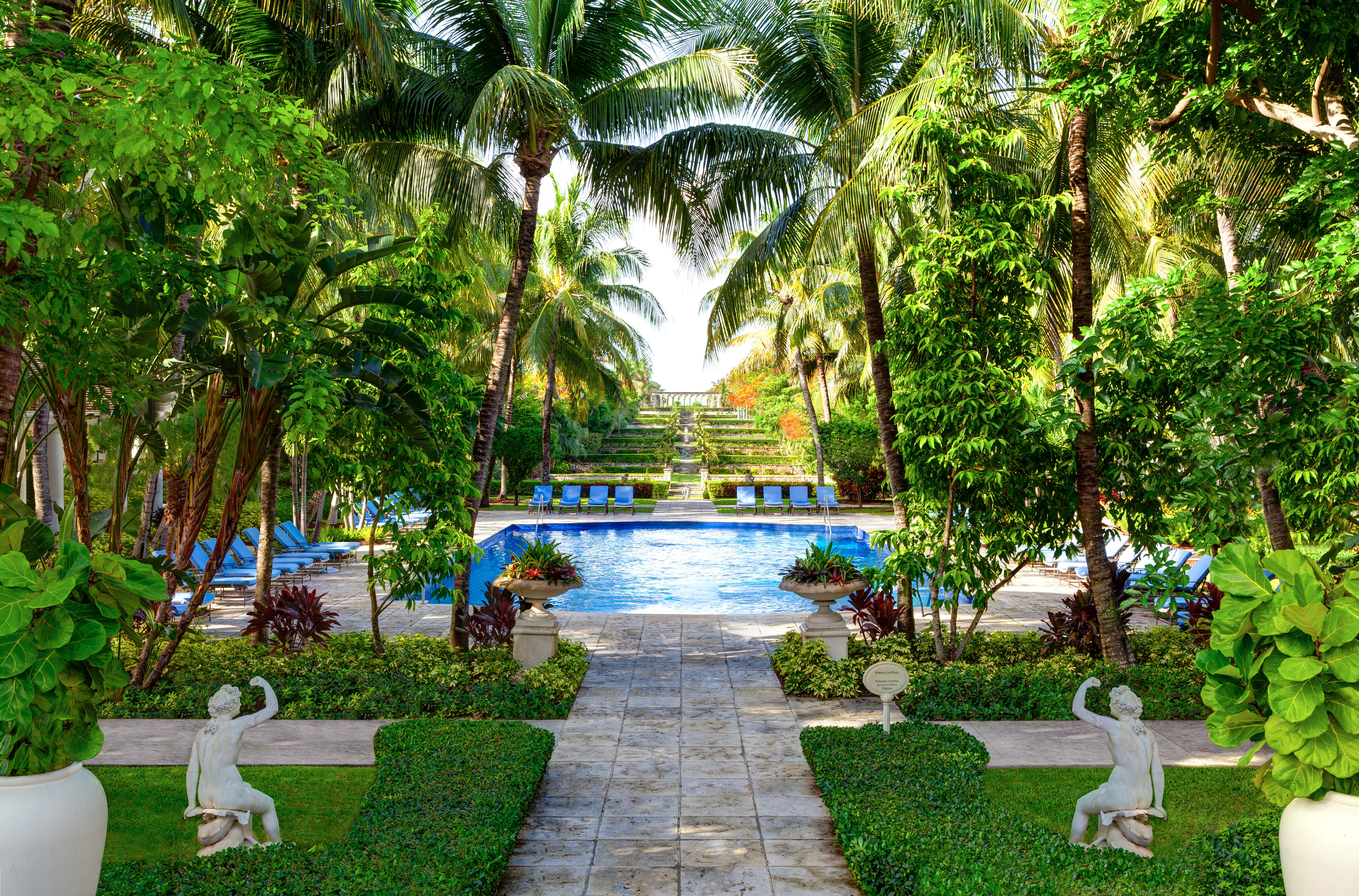 Adult-only Family Grounds Hotels Play Pool Romance Trip Ideas tree Resort botany Garden arecales backyard plant swimming pool Jungle botanical garden tropics flower palm surrounded
