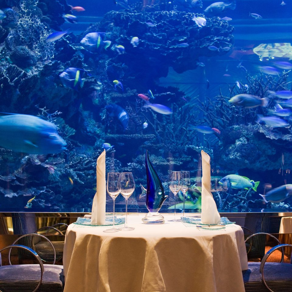 Adventure Bar Dining Drink Eat Hip Luxury Modern Ocean Scenic views Wildlife blue water marine biology aquarium underwater coral reef theatrical scenery leisure