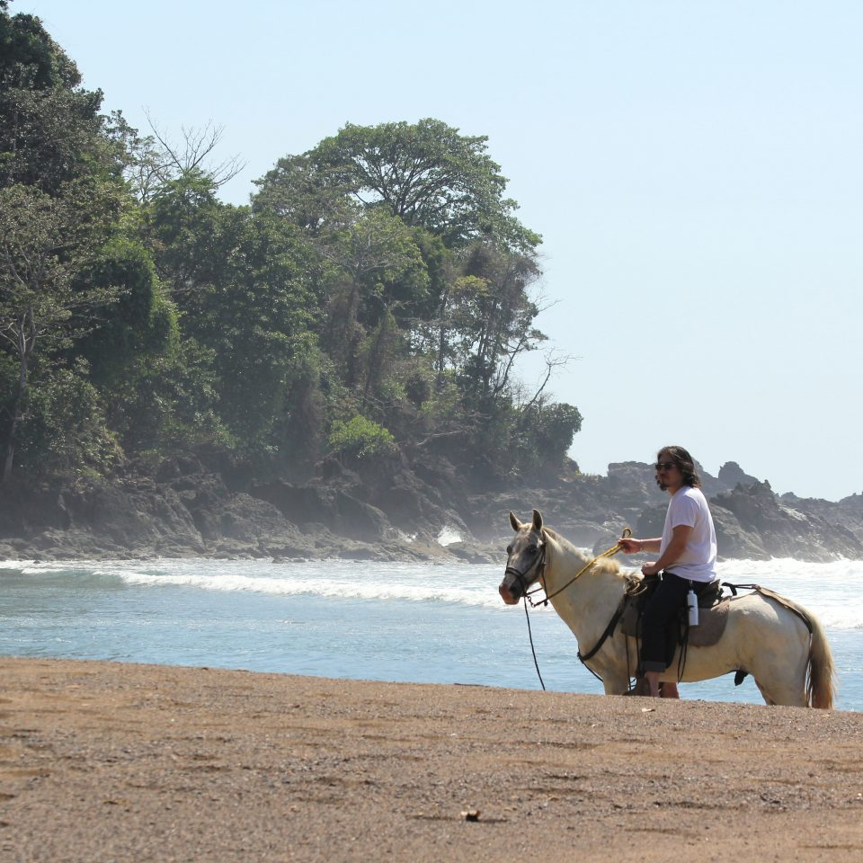Adventure Beach Eco Grounds Jungle Outdoor Activities Play Rustic Wellness water sky horse Sea Coast shore horse like mammal landscape sand sandy