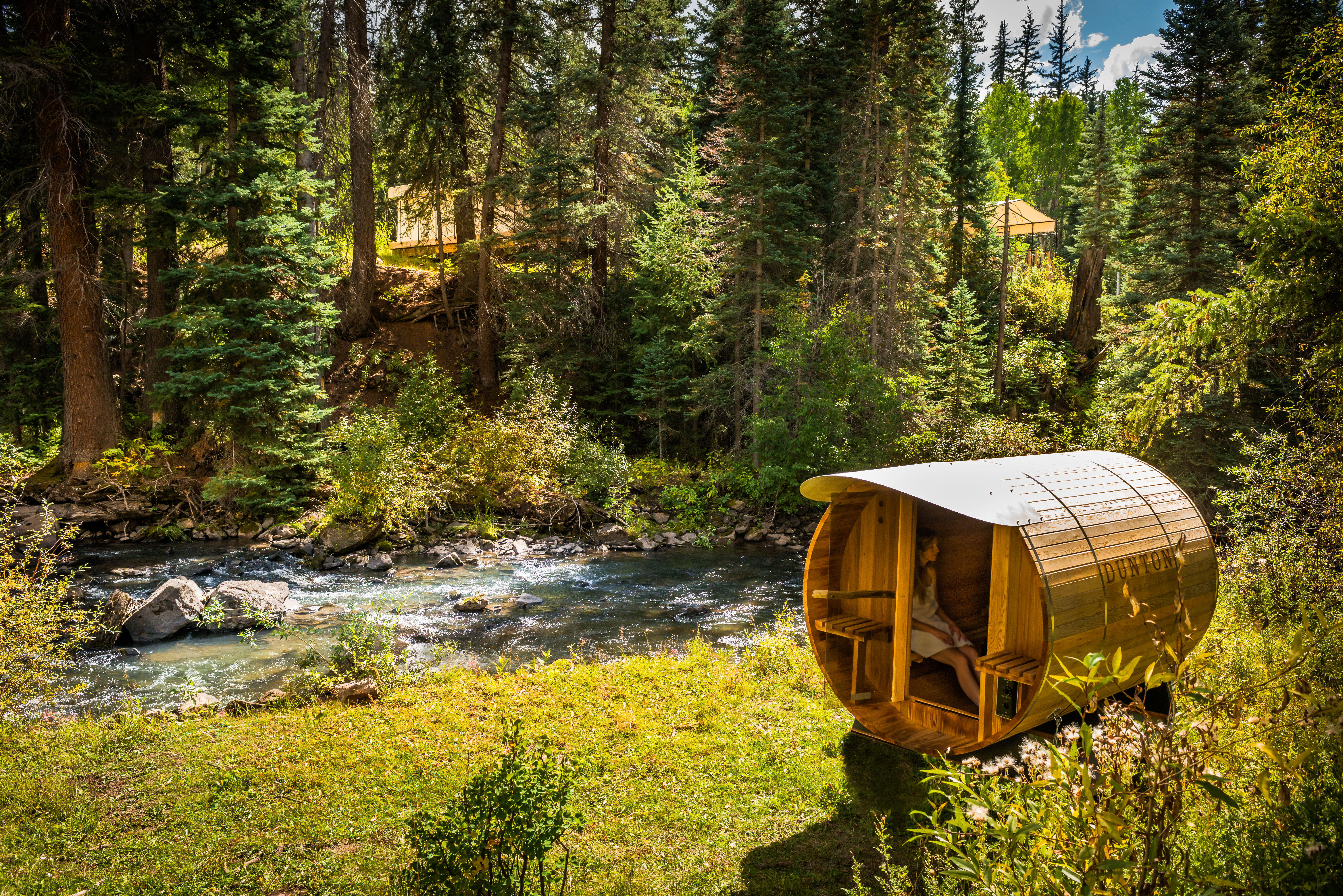 Adventure Country Forest Glamping Grounds Luxury Travel Mountains Rustic Scenic views Trip Ideas Wellness tree grass habitat Nature wilderness natural environment ecosystem woodland season wooded autumn Jungle stream trail rainforest surrounded lush