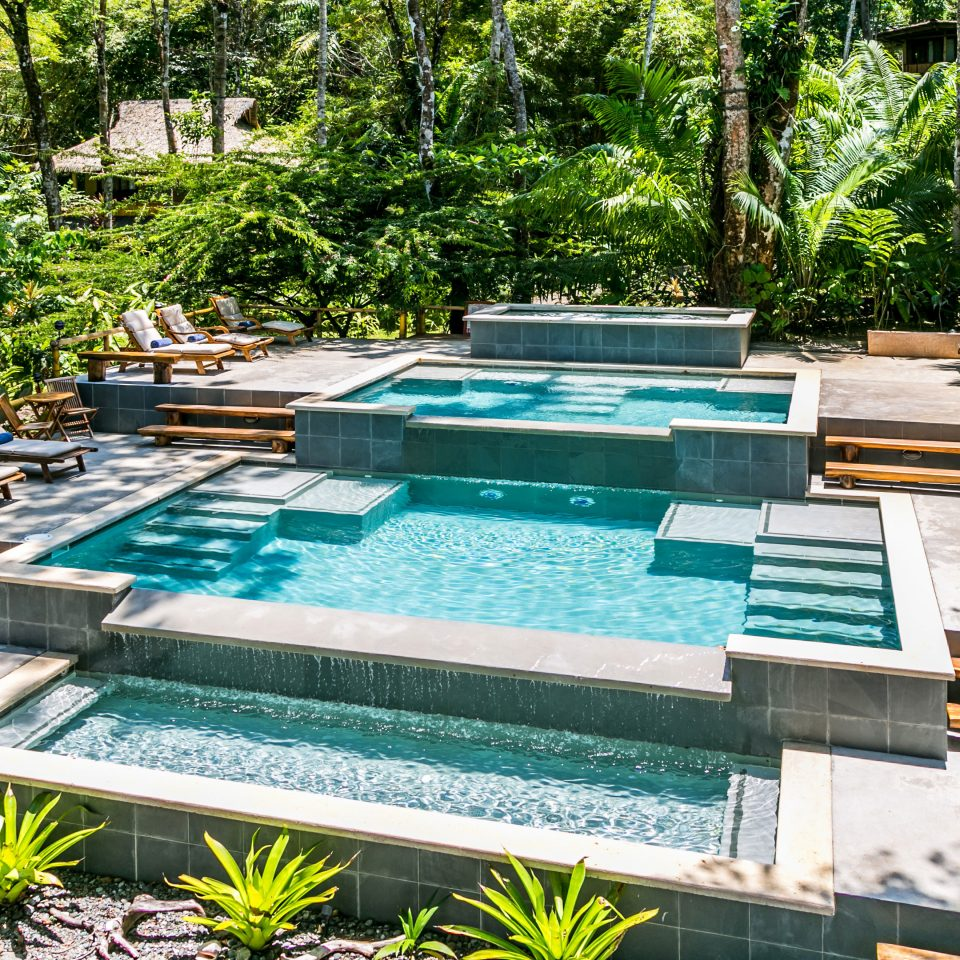 Adventure Eco Grounds Jungle Outdoor Activities Pool Rustic Wellness tree swimming pool backyard Garden yard Courtyard reflecting pool park landscape architect pond outdoor structure landscaping Patio water feature lawn lined