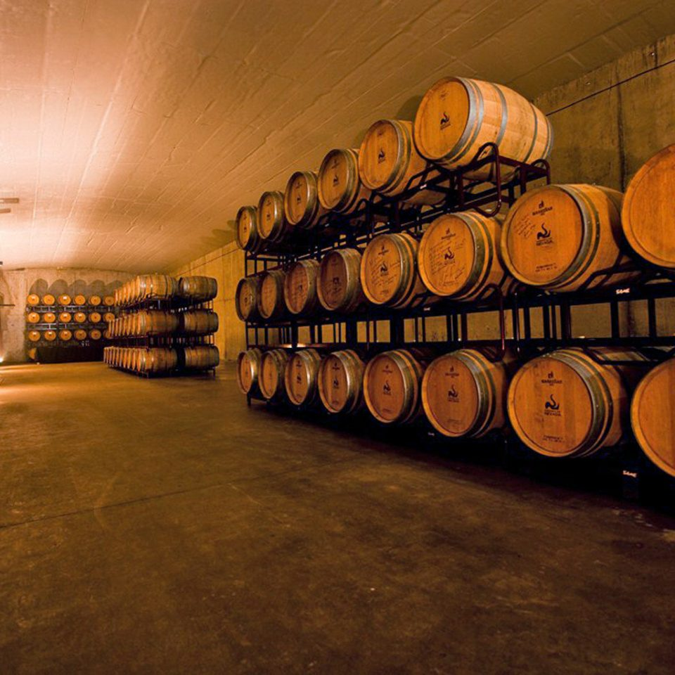 Adventure Cultural Drink Wine-Tasting man made object vessel night darkness barrel shape wine Winery basement tourist attraction
