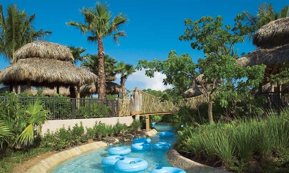 Adventure Family Pool tree sky grass Resort ecosystem palm swimming pool plant Lagoon Jungle arecales Water park Garden swimming surrounded
